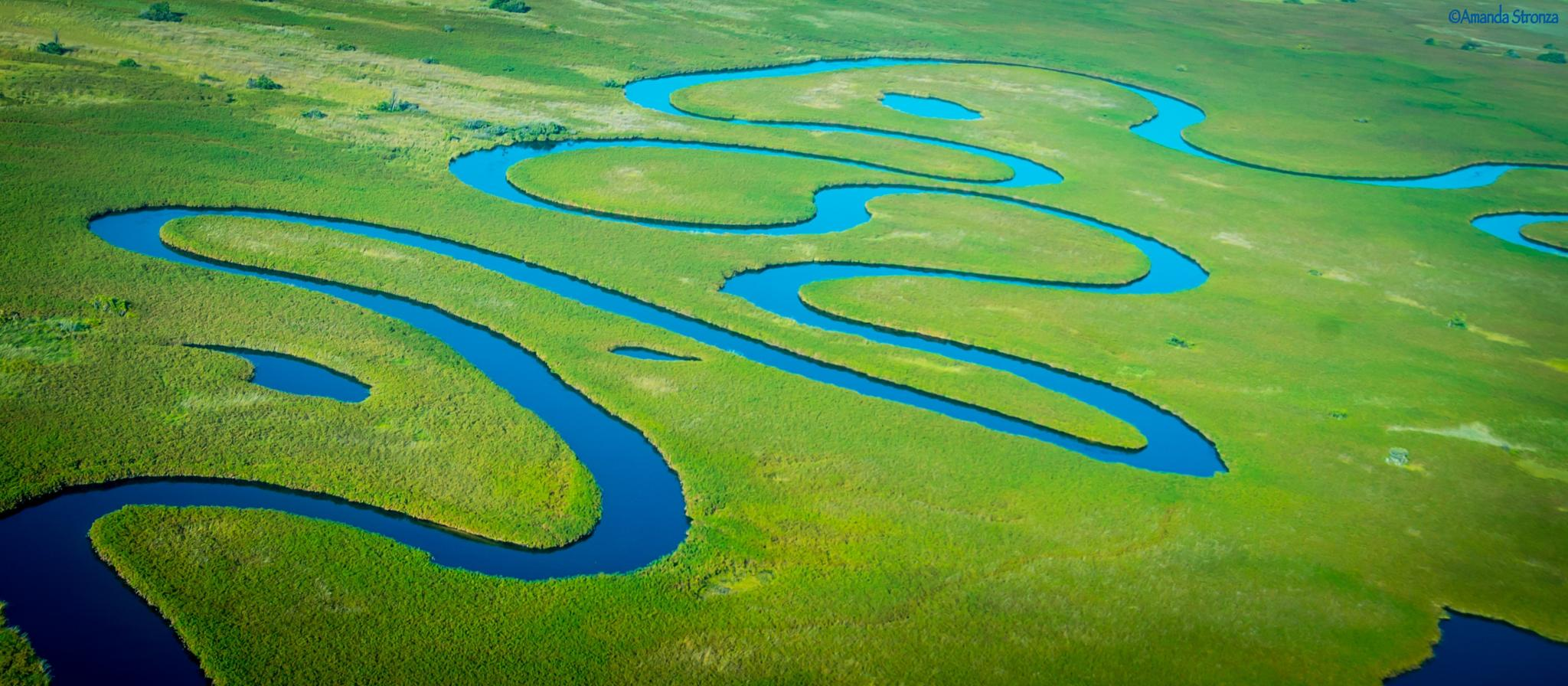 Okavango Blue by amanda.stronza