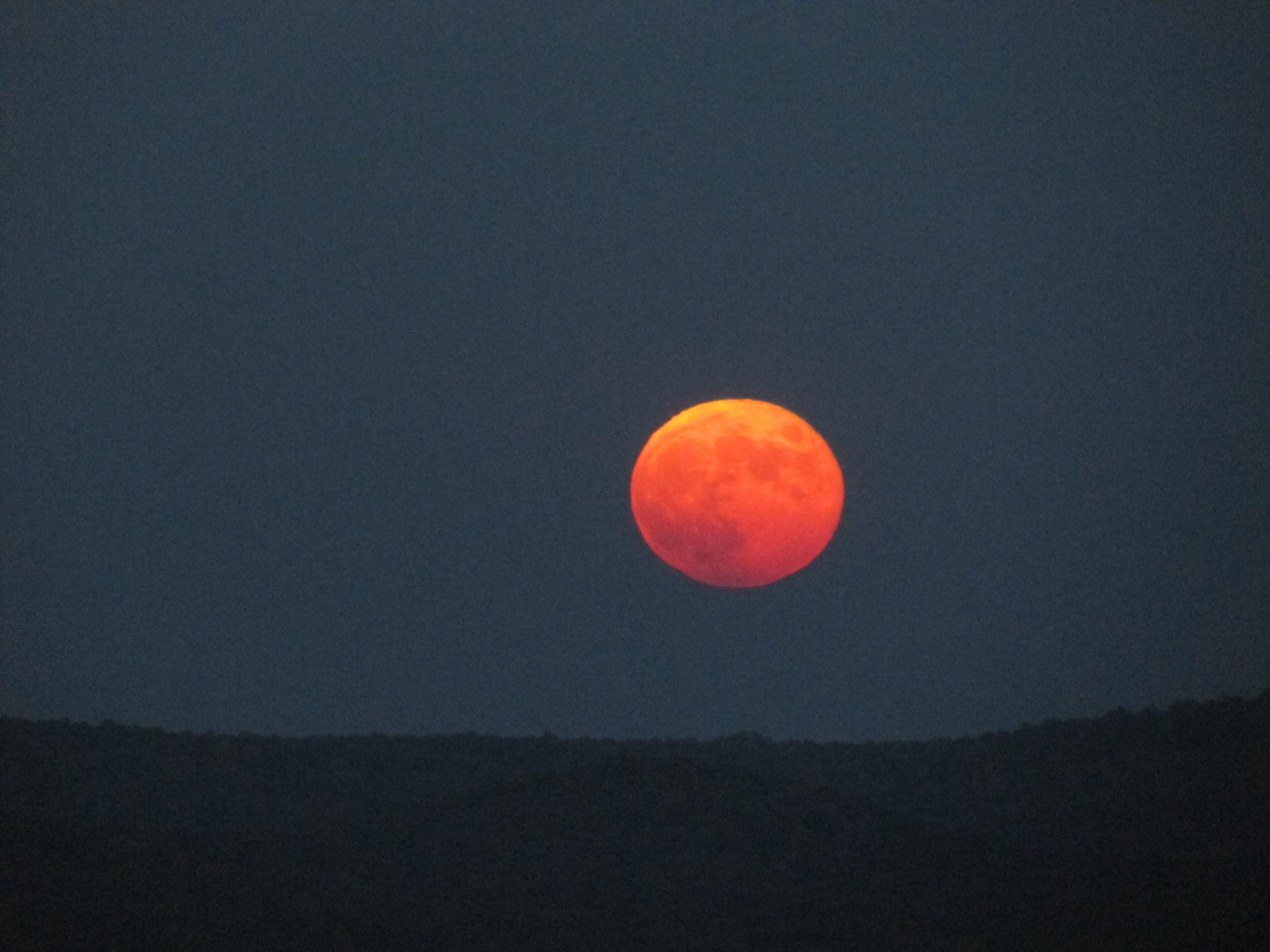 Harvest Moon over the Uwharrie Mountains, North Carolina by Lisa Marshall Moore