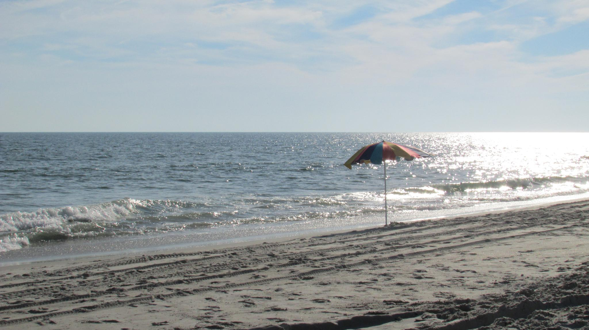 Lone Beach Umbrella by Lisa Marshall Moore