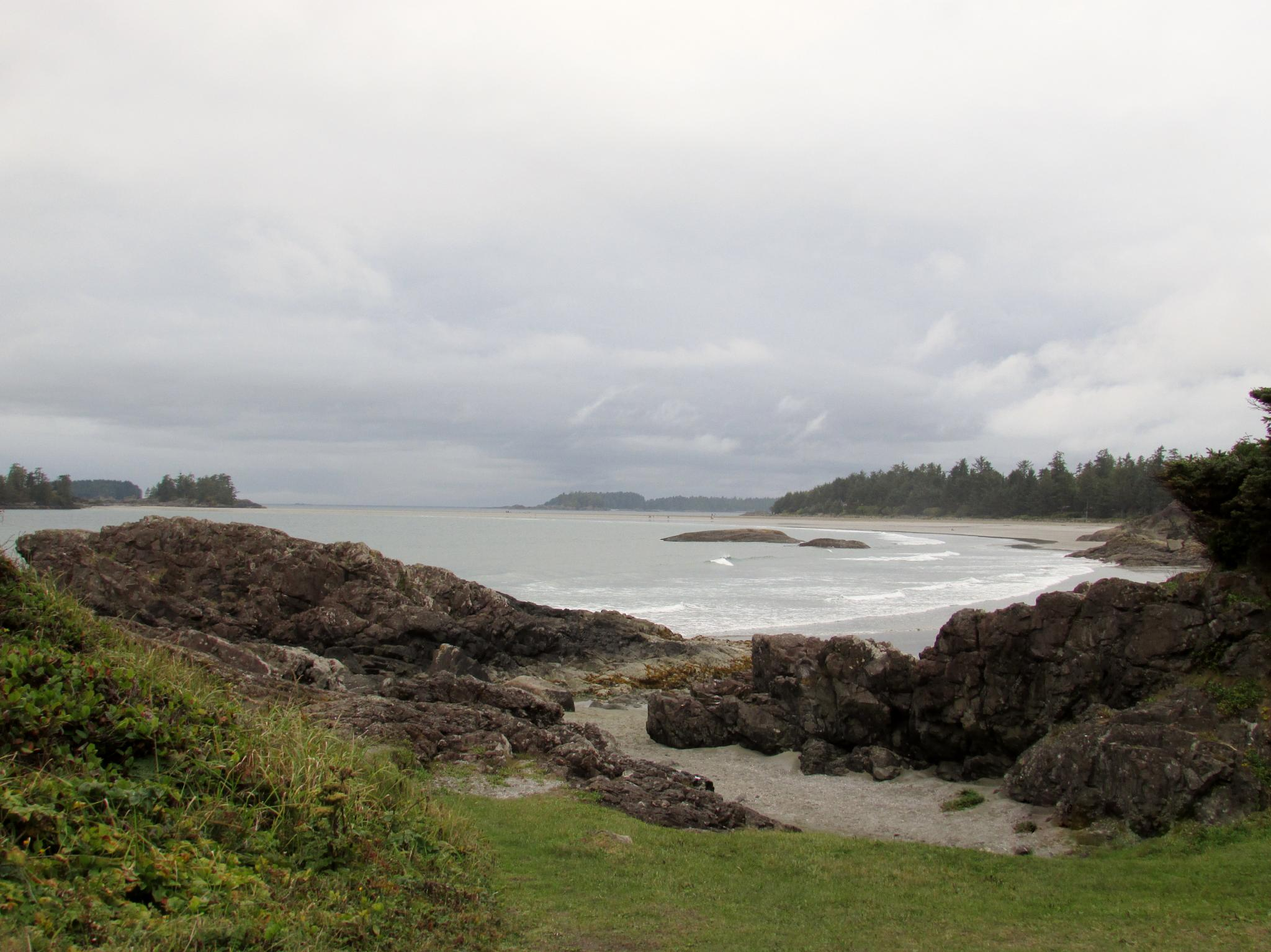 Rocky Shoreline of Vancouver Island by Lisa Marshall Moore