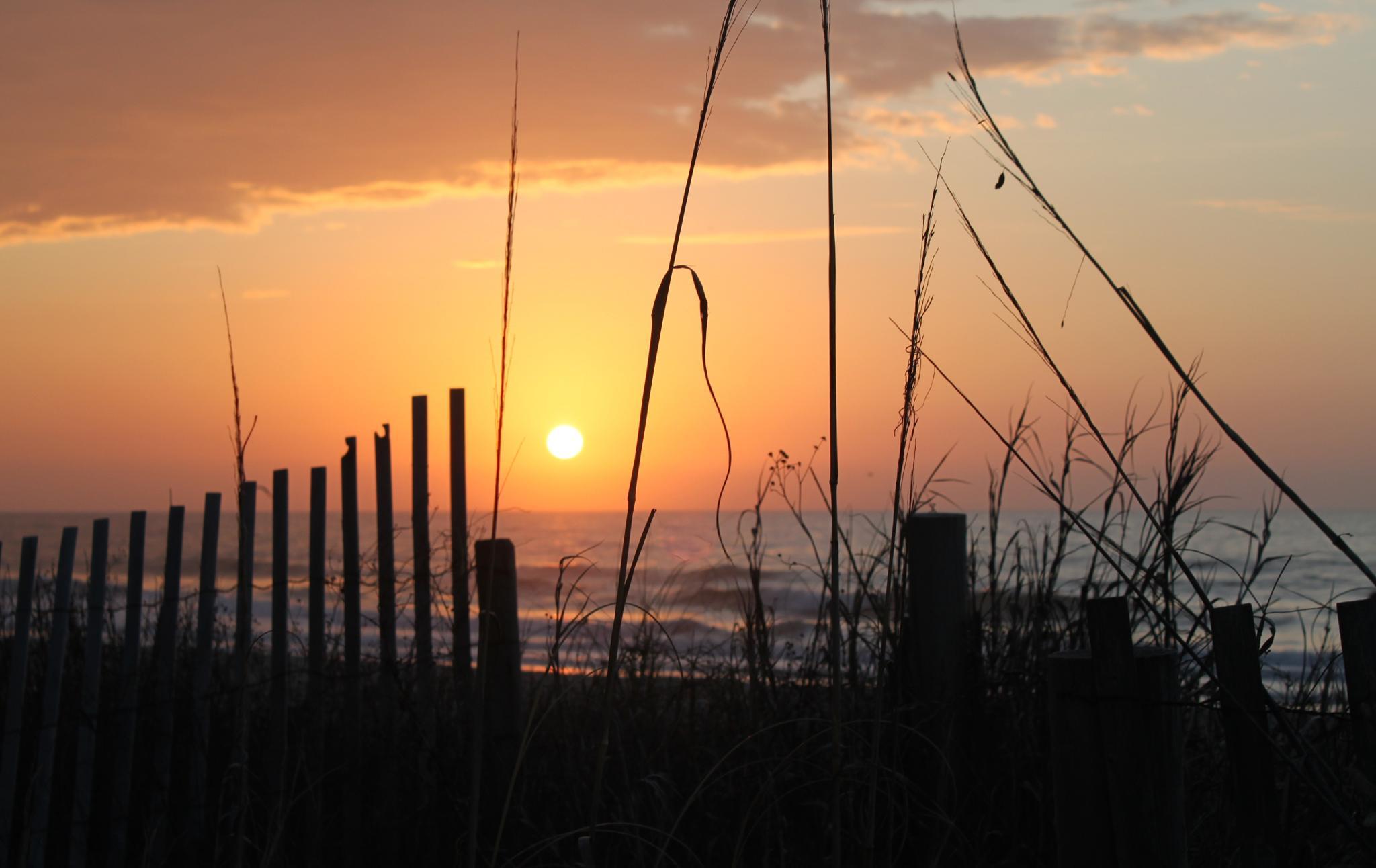 Sunrise at Myrtle Beach, South Carolina by Lisa Marshall Moore