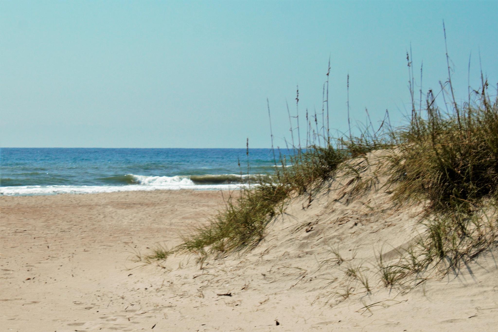 Late Summer at Atlantic Beach, North Carolina by Lisa Marshall Moore