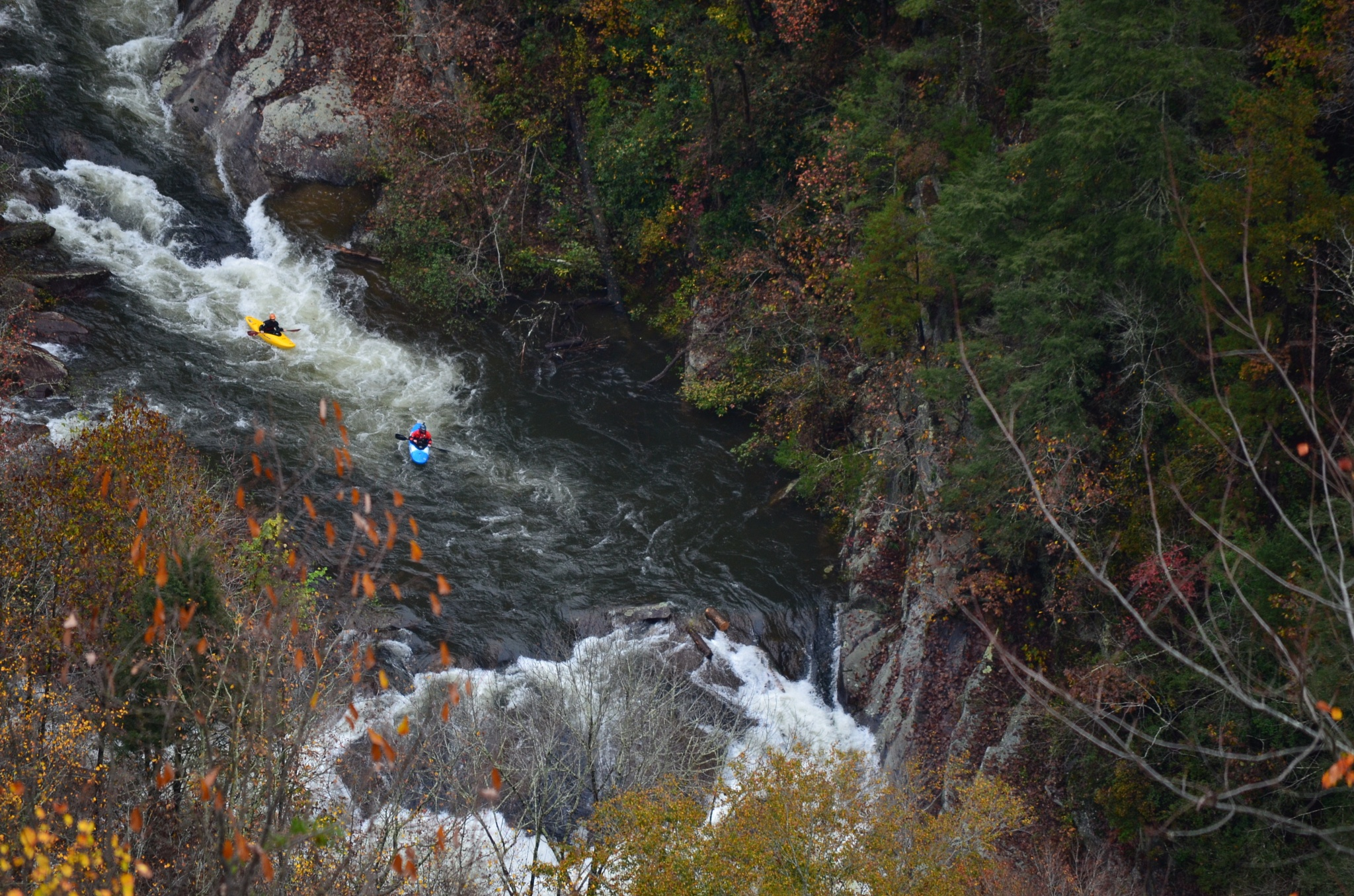 Kayakers by Marcy Cox