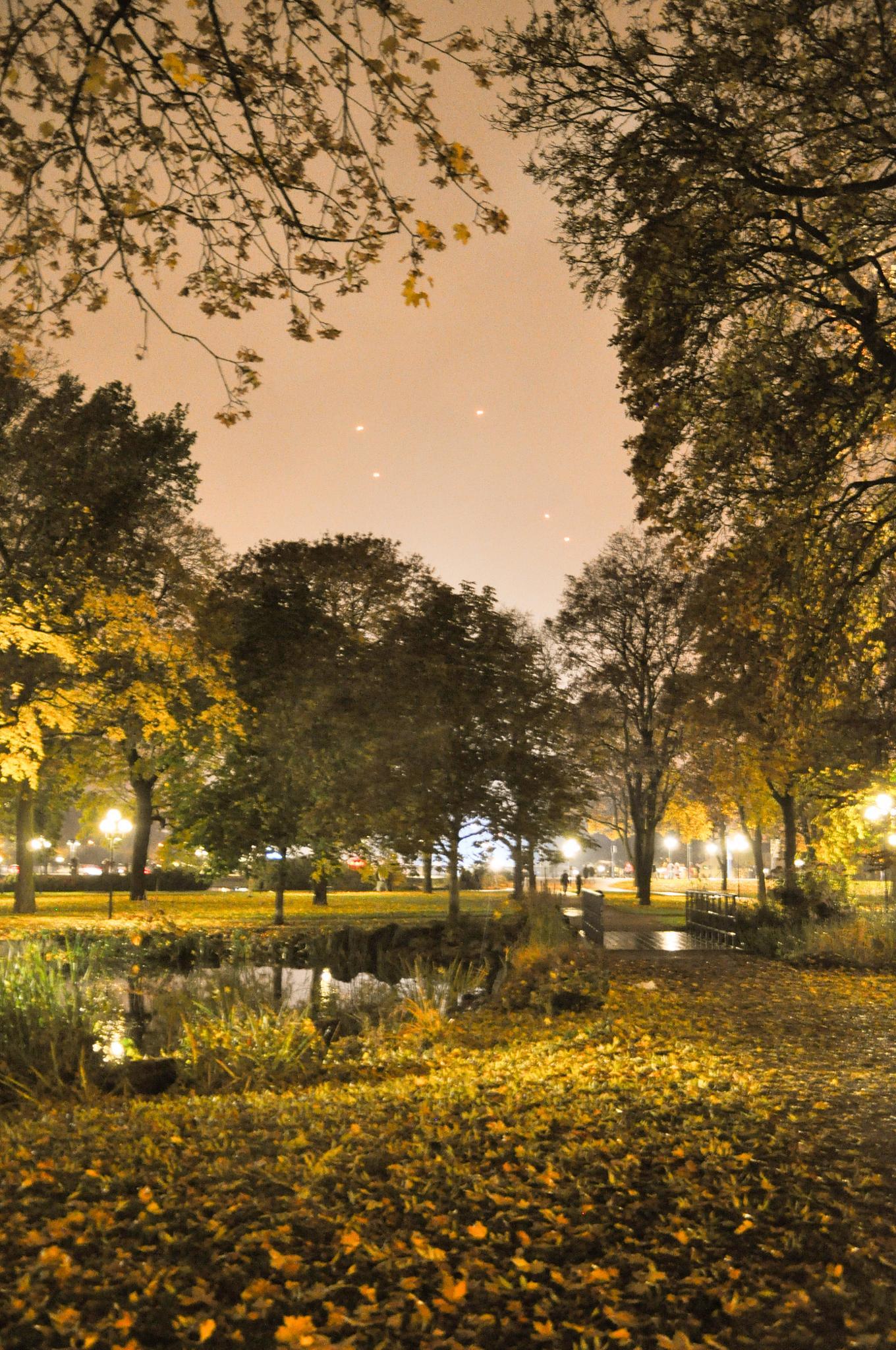 Eskilstuna stadspark by Tobias Erdsjö