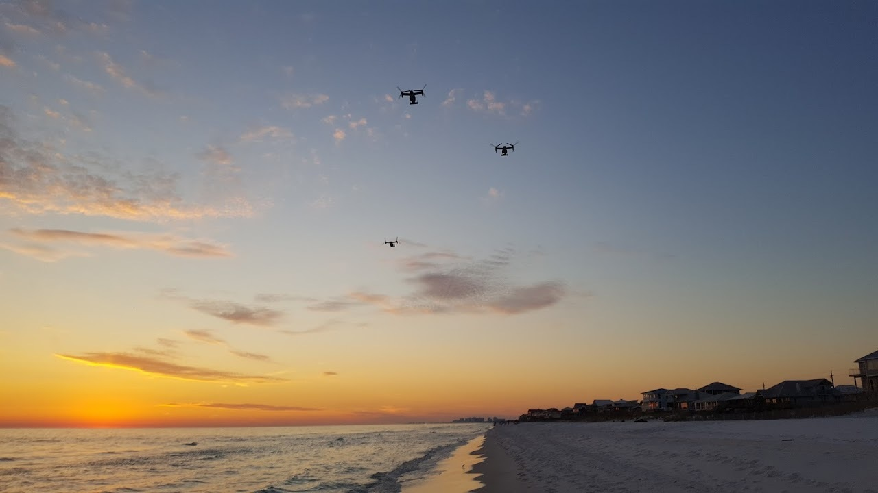 Sunset with Ospry's by wilkins1000