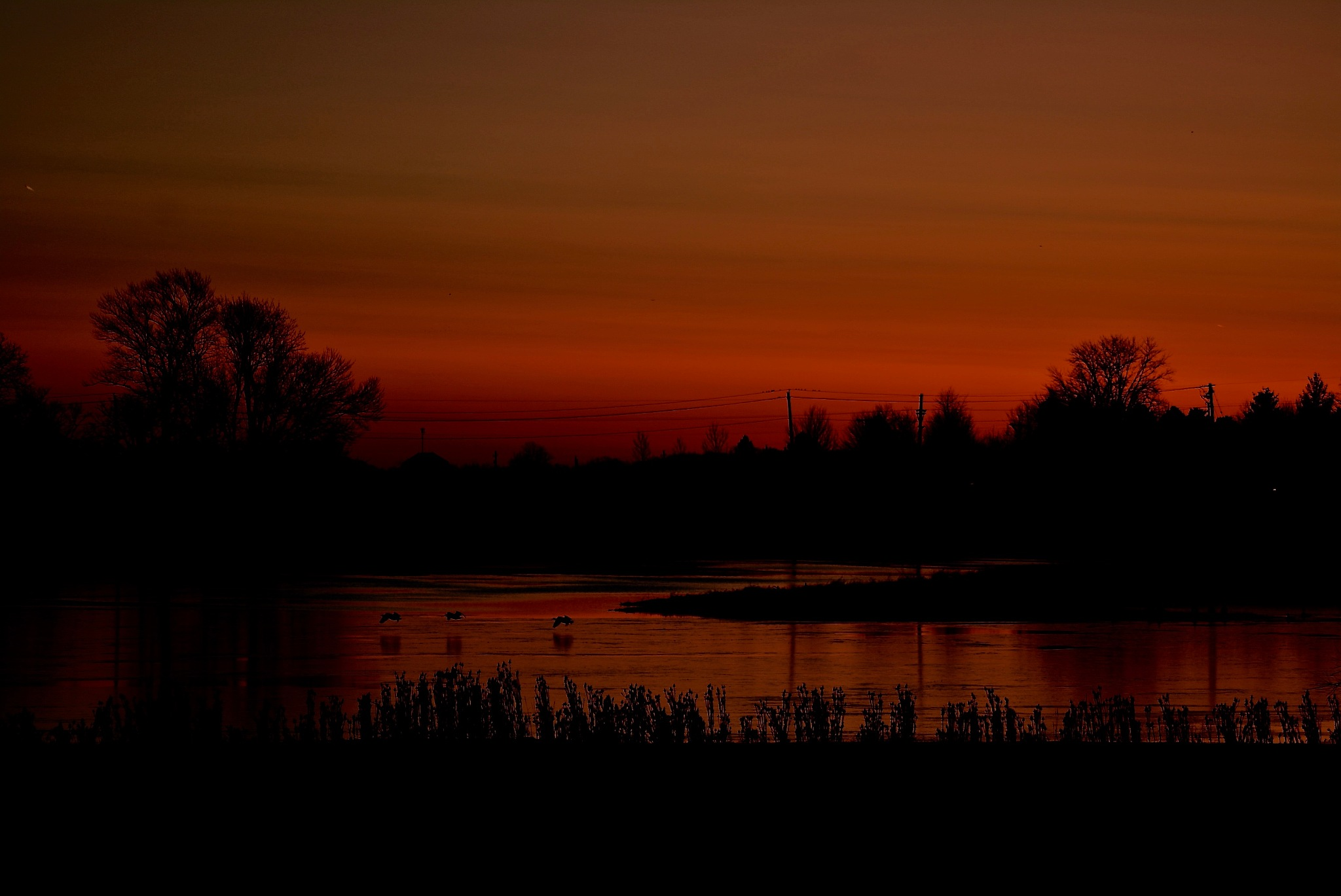 Red Sunrise by LisaWolf7