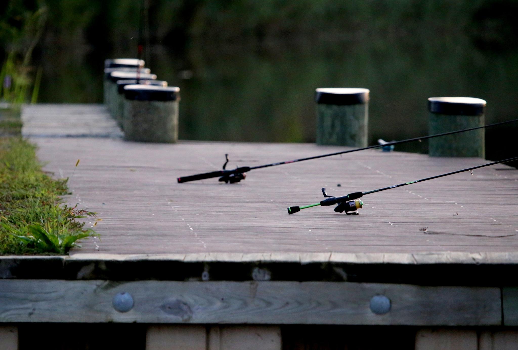 fishing dock by tarotdog