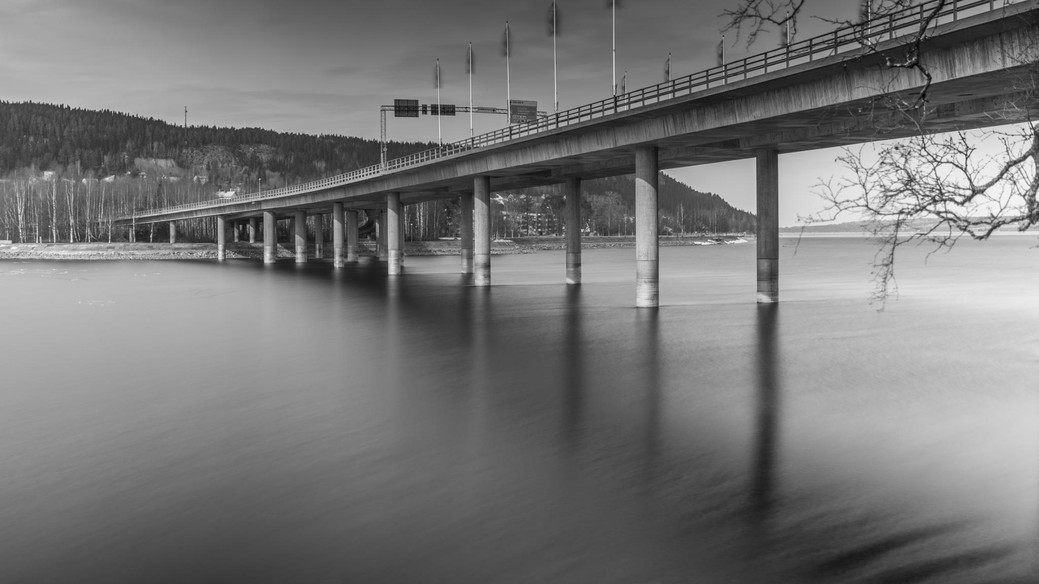 Bridge by Lautaro.Diaz.Photo