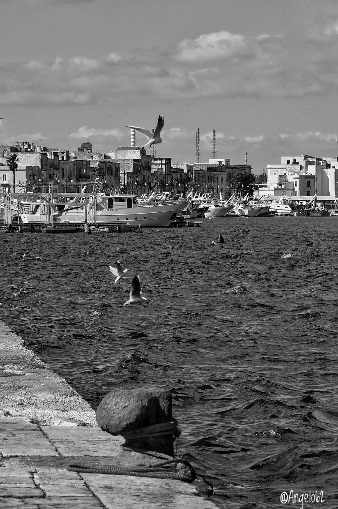 Taranto città di mare  by Angelo62