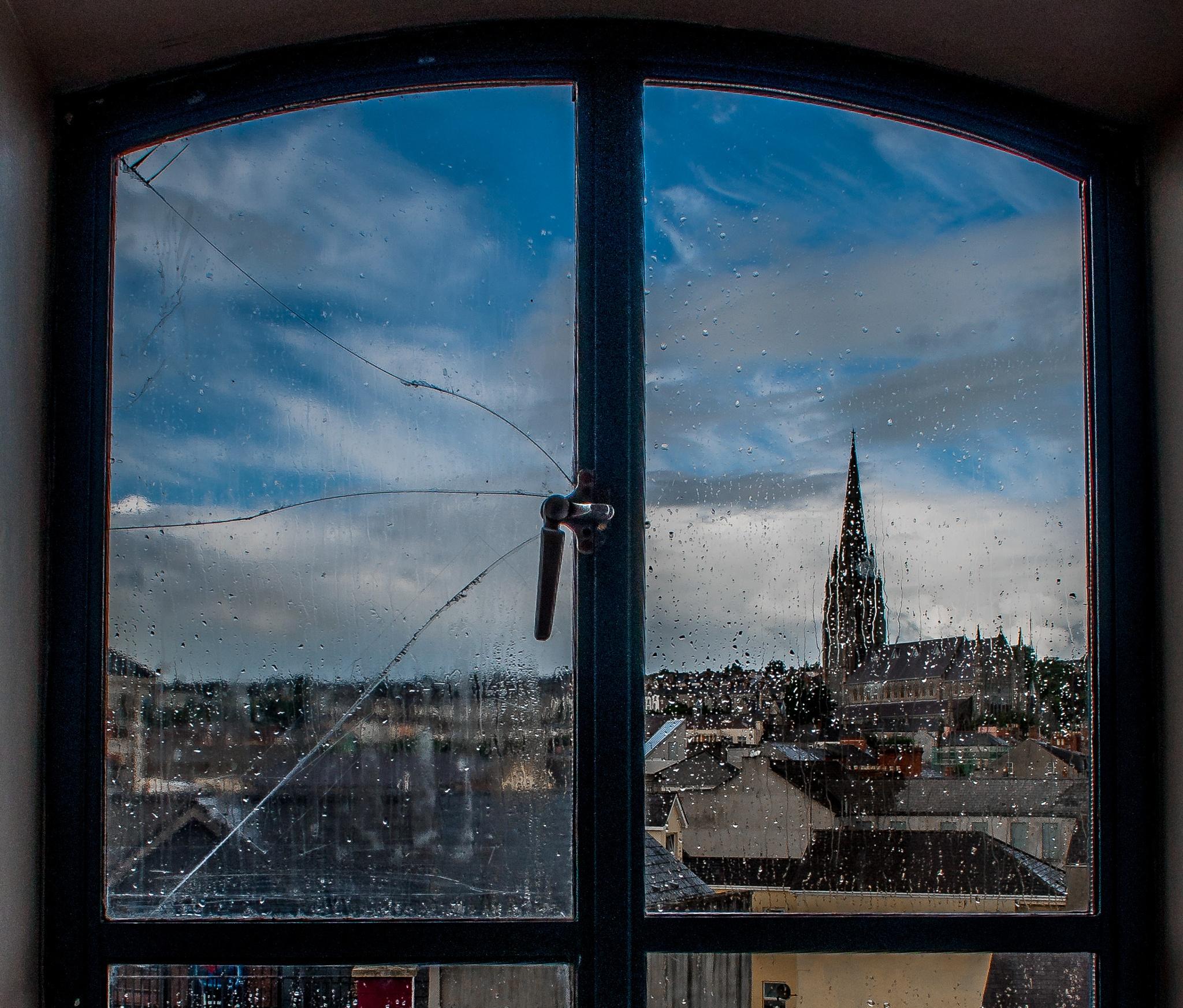 Window by donato rondini