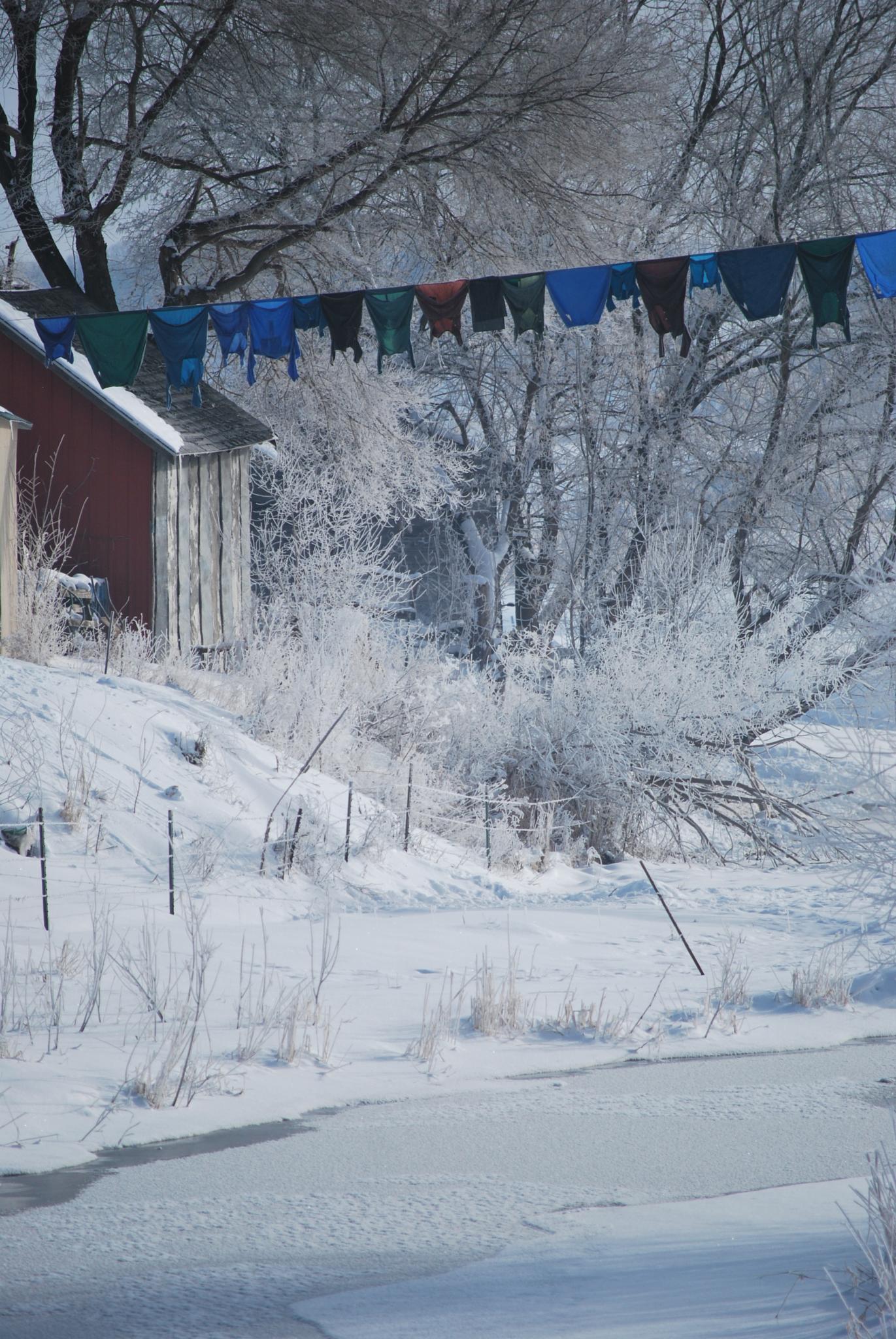 Amish Laundry by debi.koeller.75