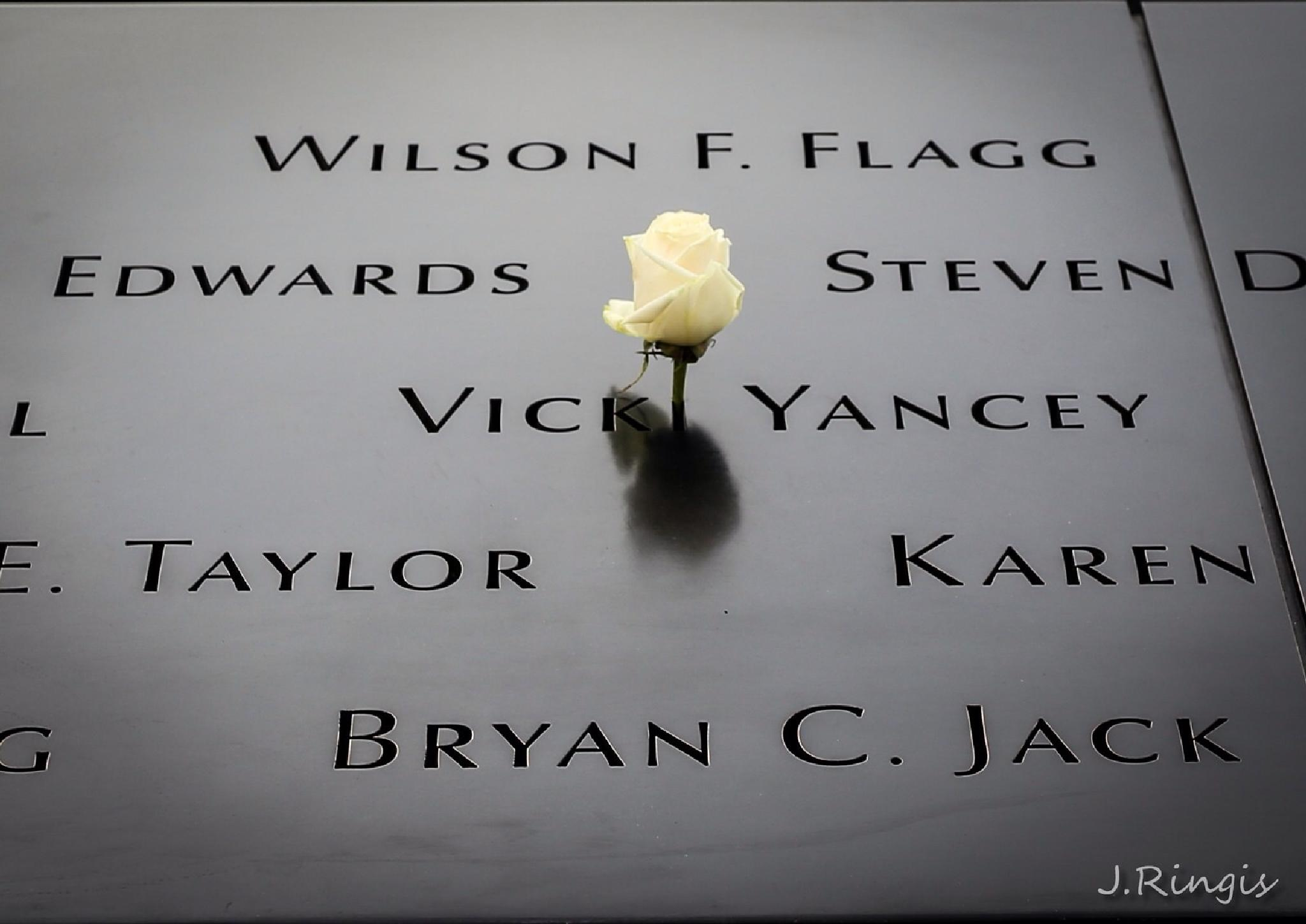 Never forget.... by John Ringis