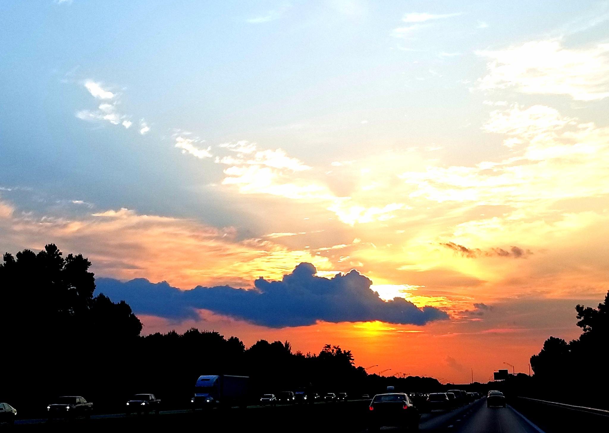 morning beauty  by kim.e.rhoades