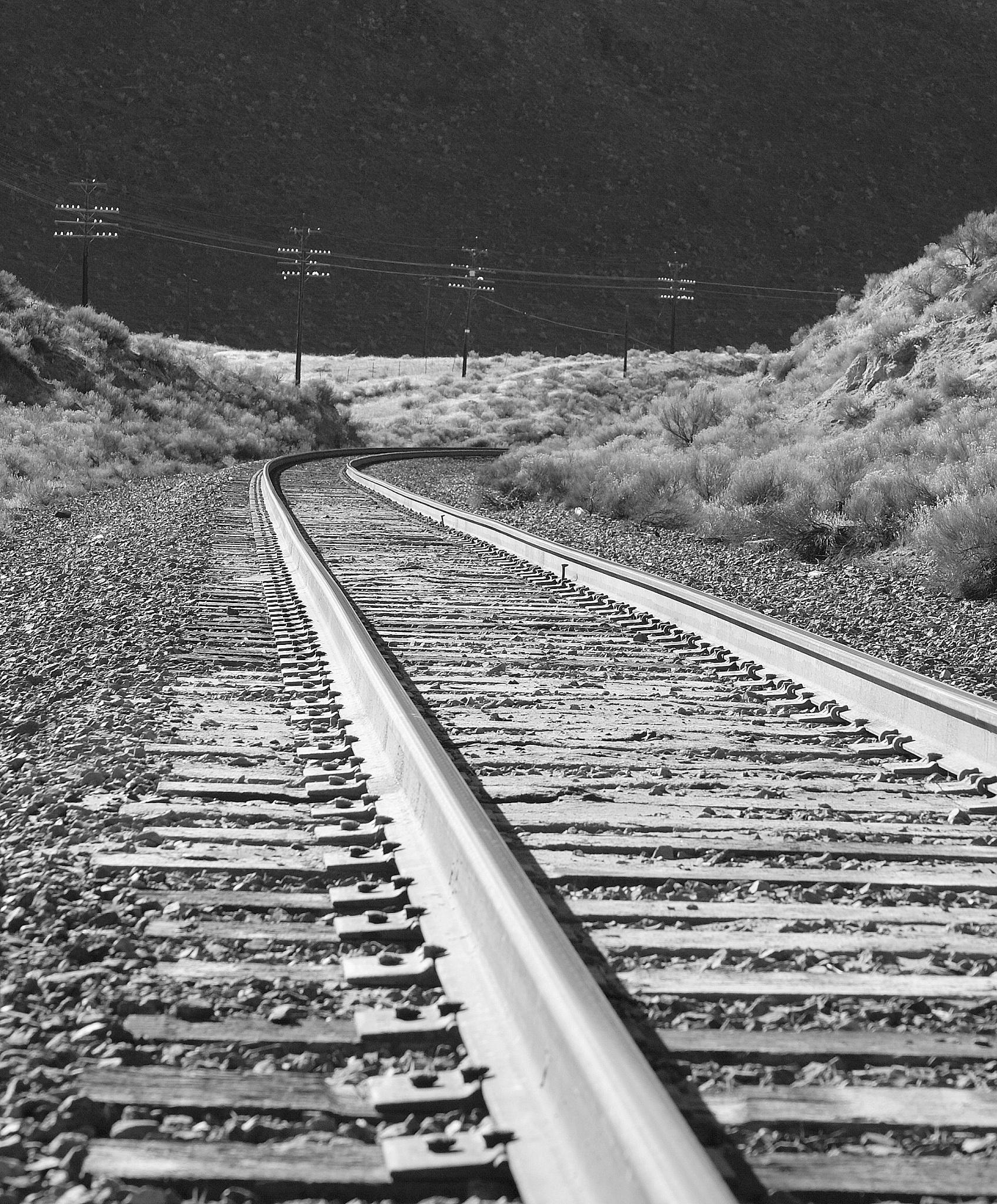 tracks by shawna.morgan.7