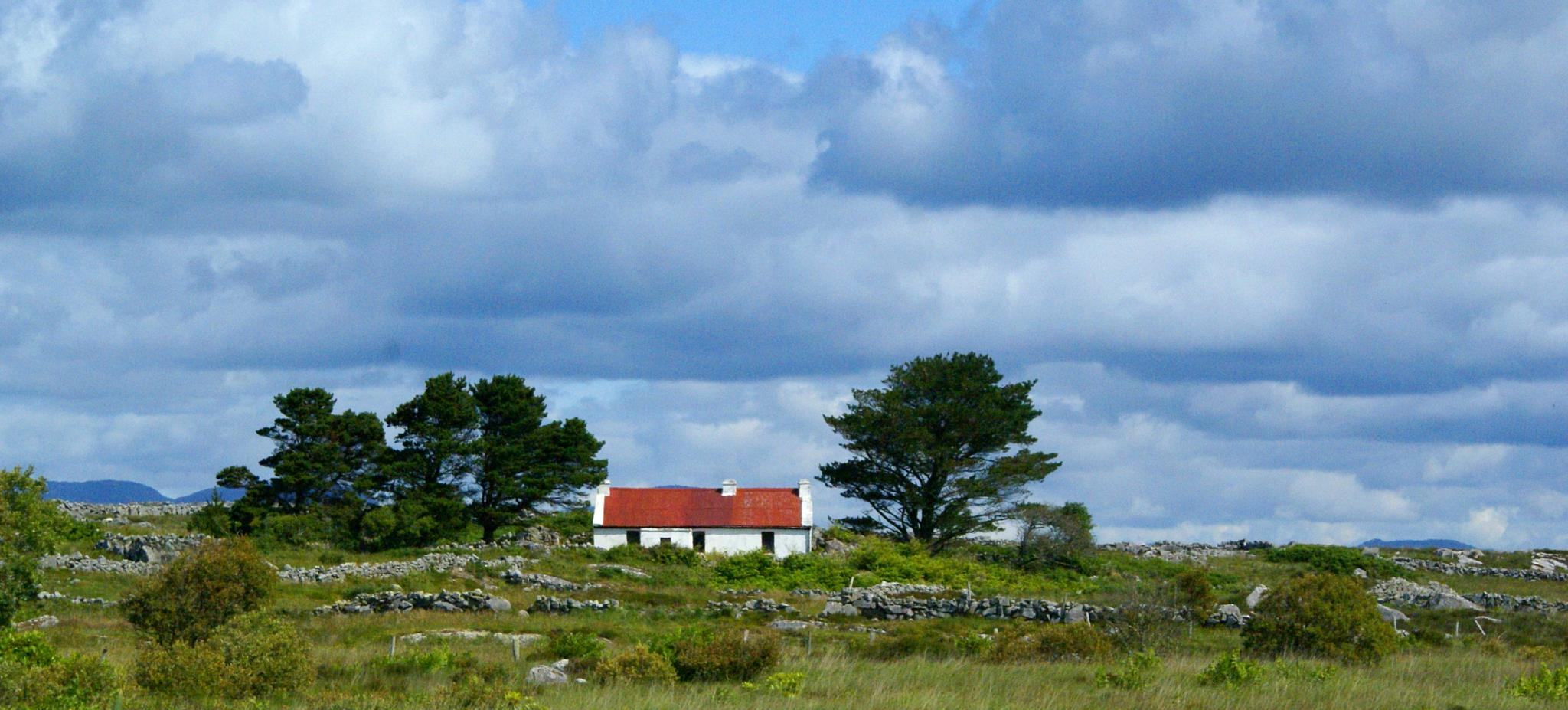 Photo in Landscape #country #ireland #blue #skies #red #green