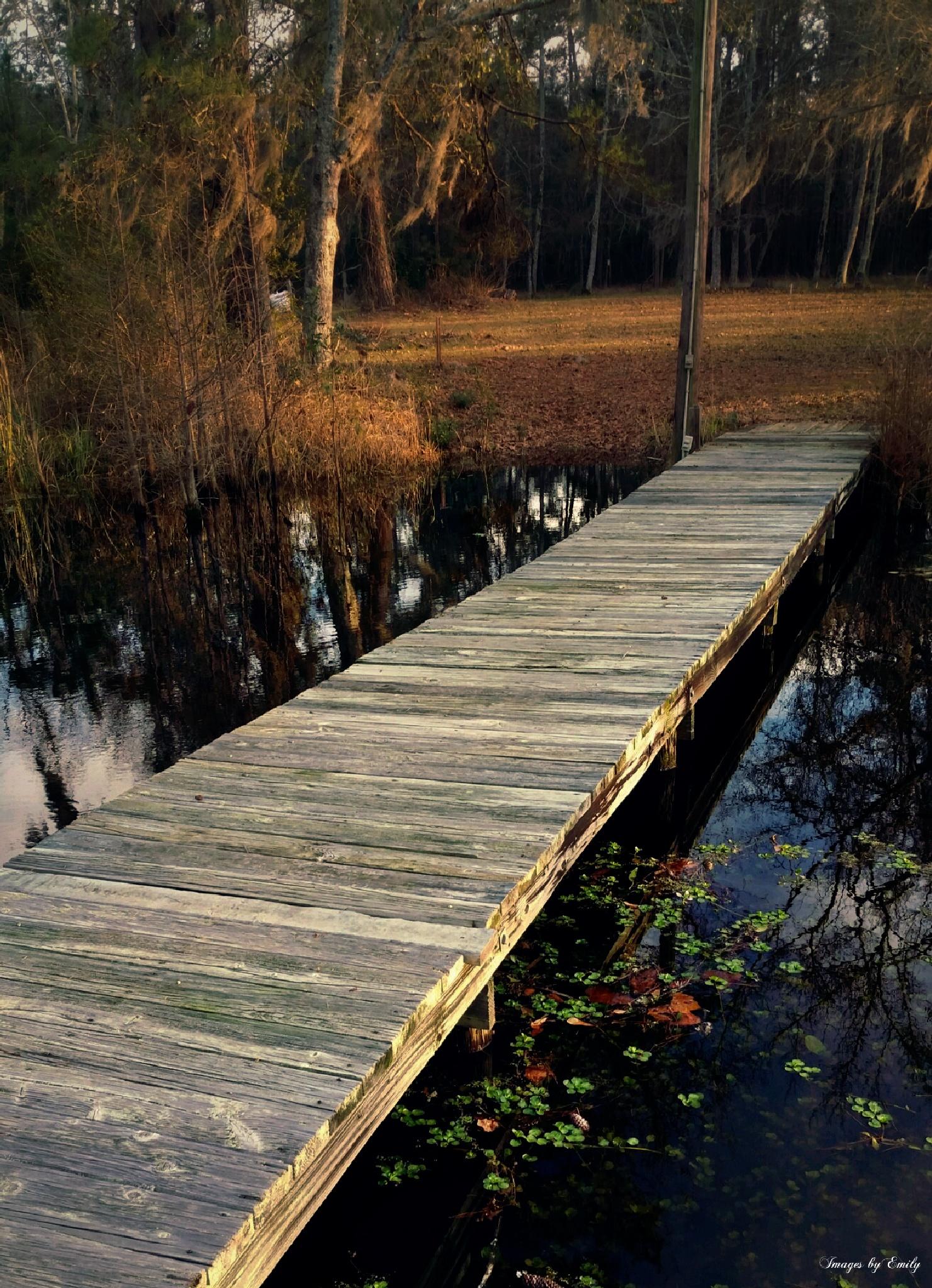 The Bridge by Emily Grant