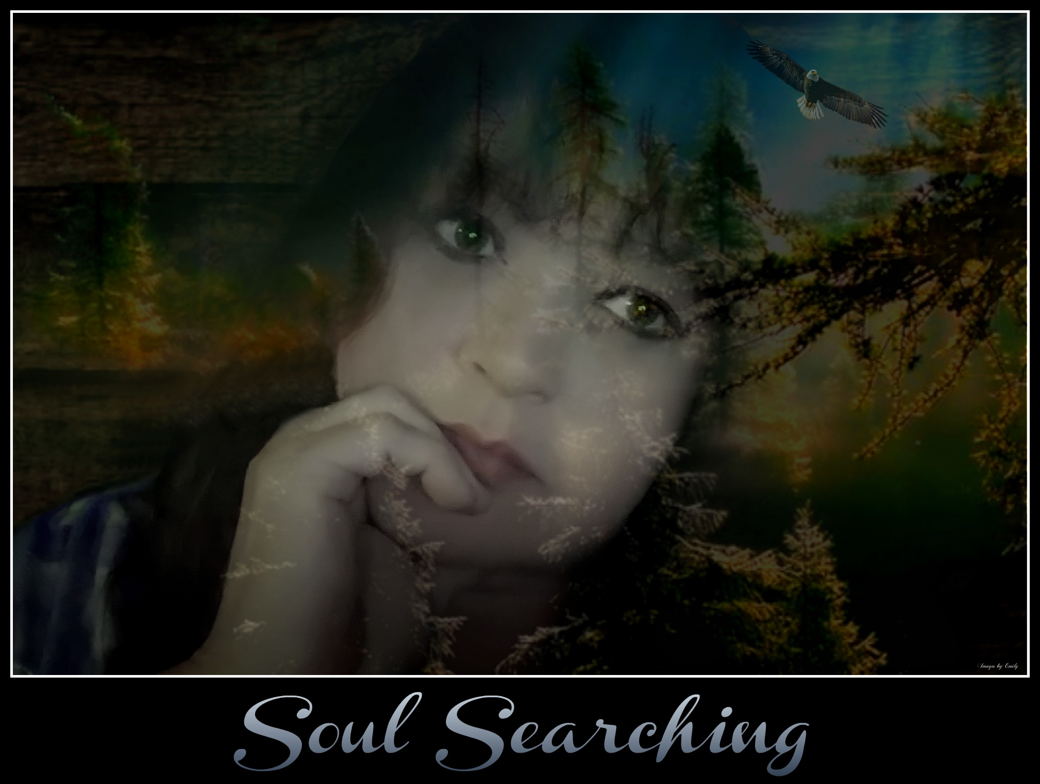 Soul Searching by Emily Grant