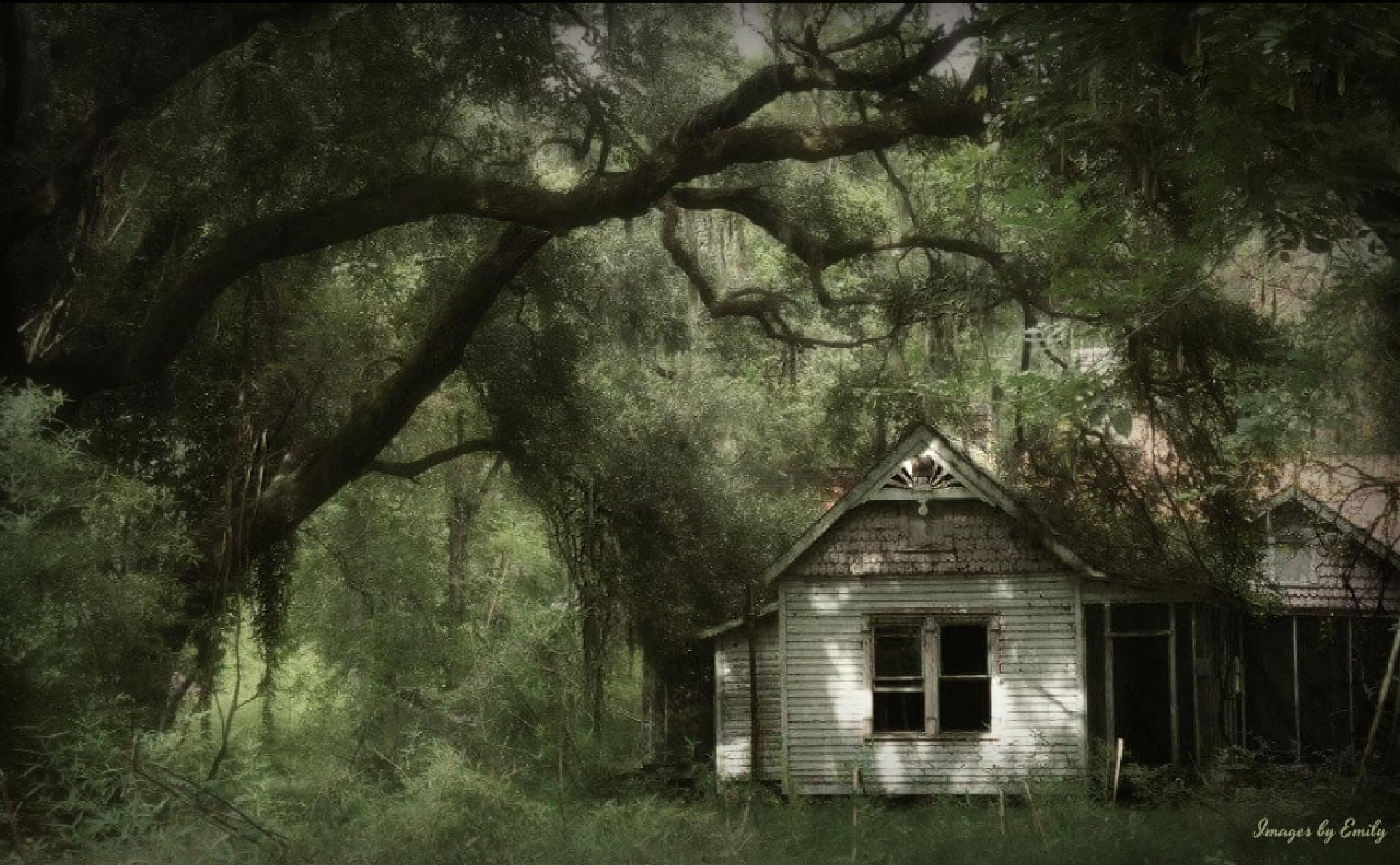 Abandon House by Emily Grant