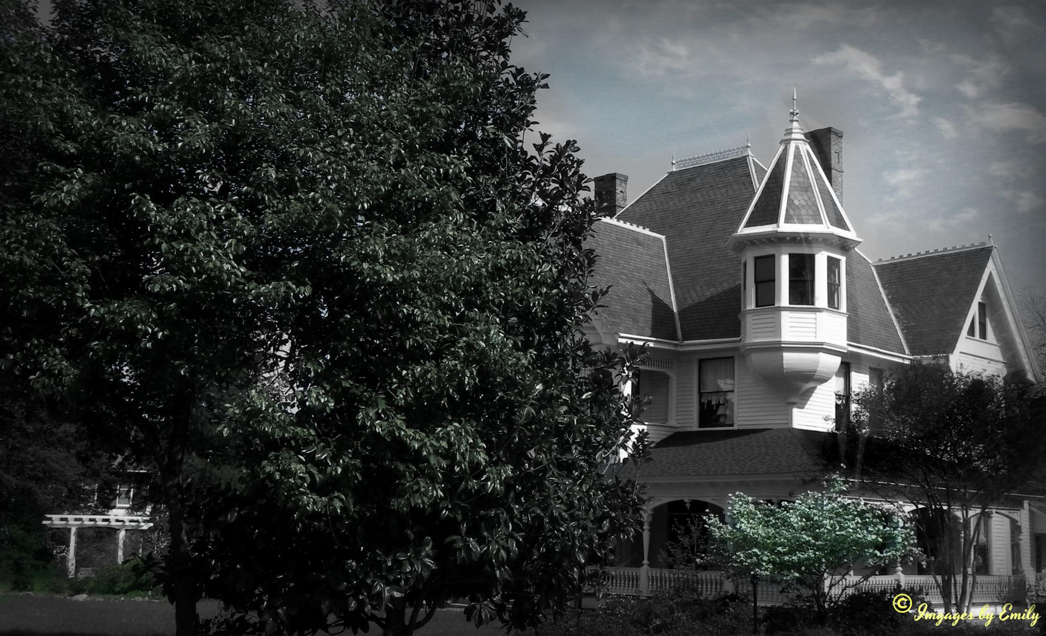 Victorian House by Emily Grant