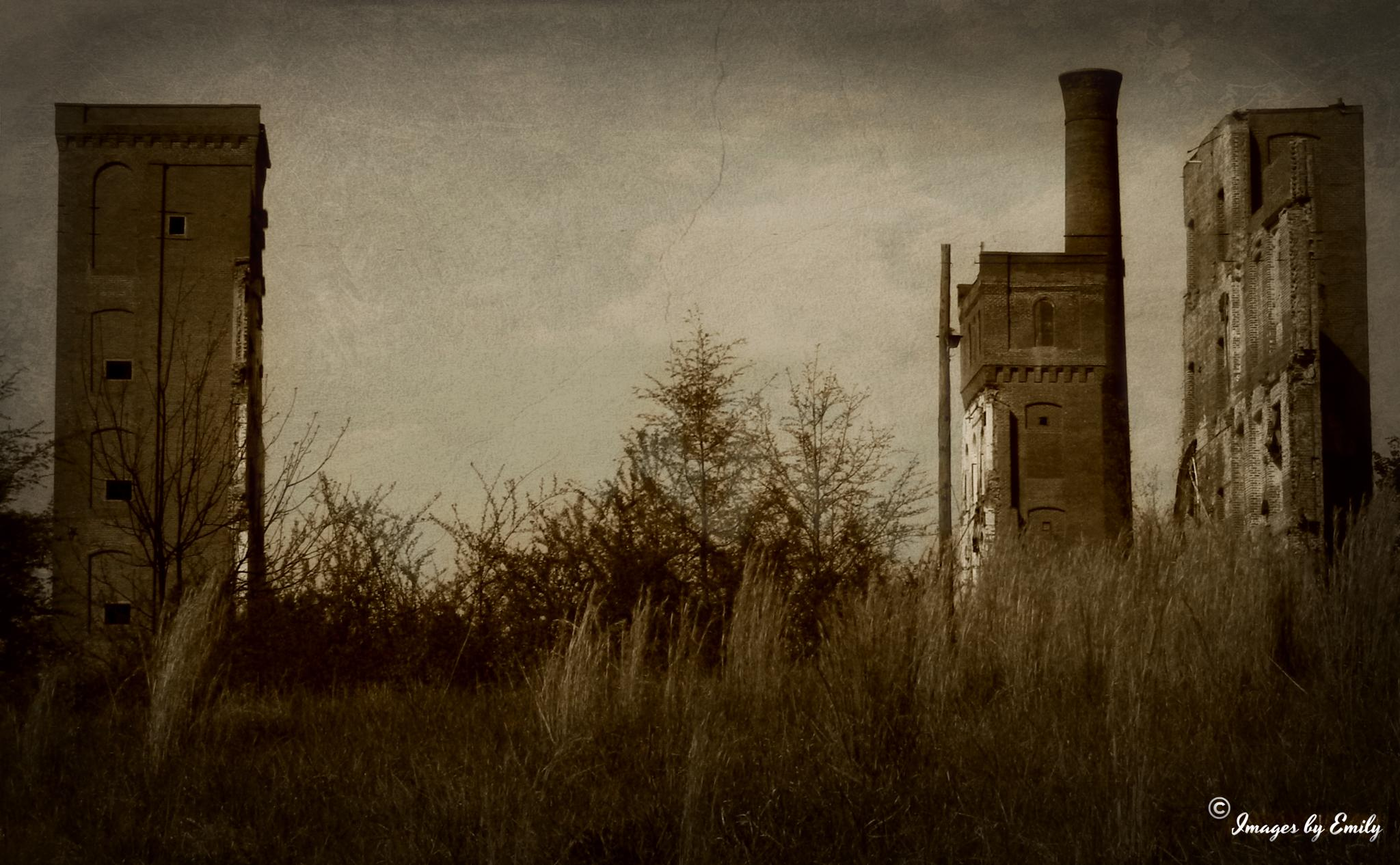 Sad Remains of an Old Cotton Mill by Emily Grant