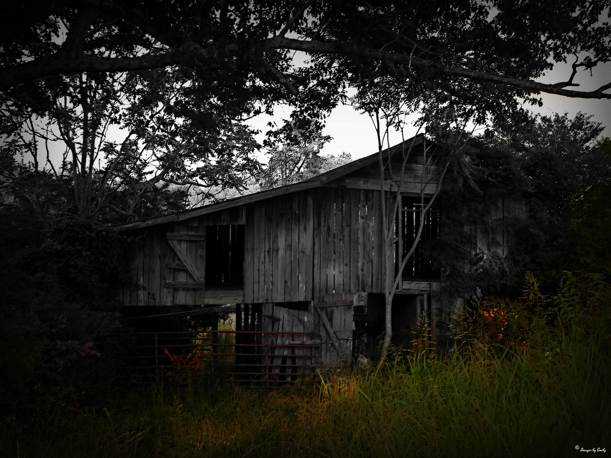 Old hay barn  by Emily Grant