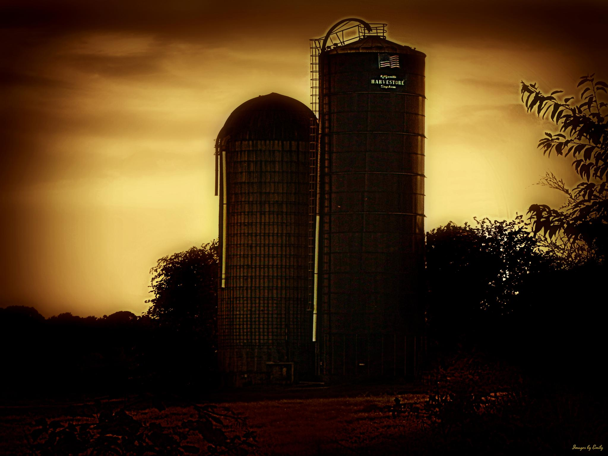 silo's at sunset by Emily Grant