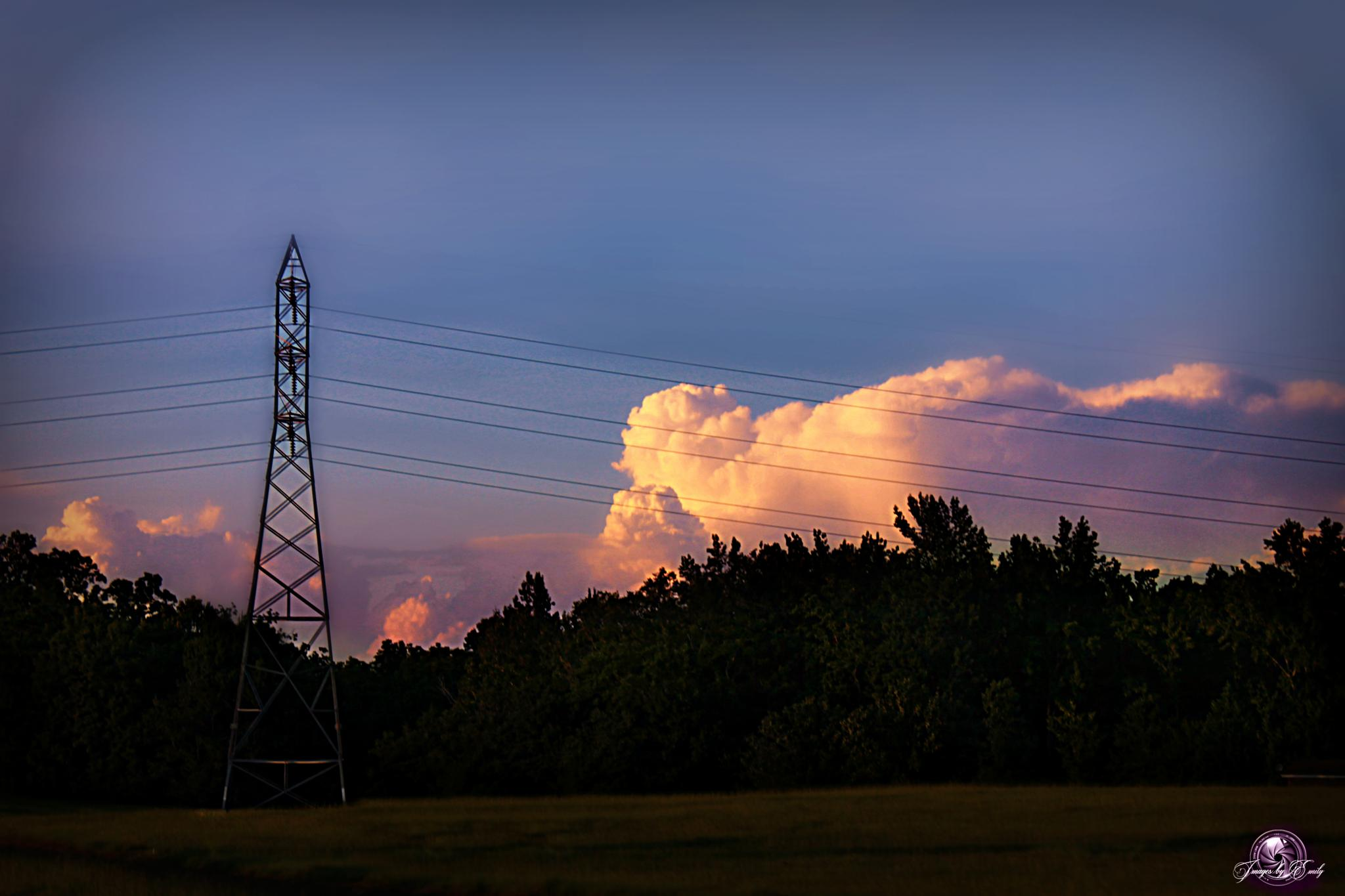Power line by Emily Grant