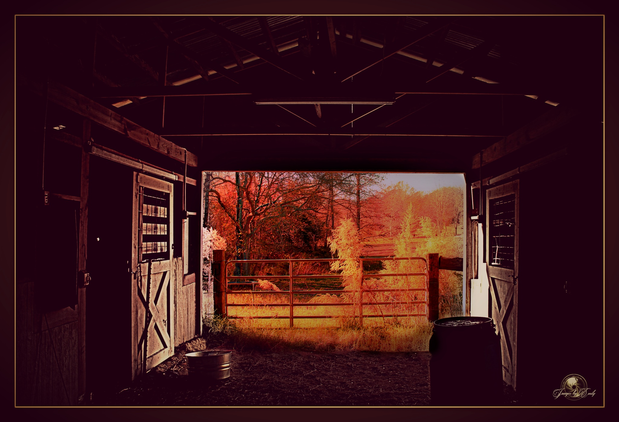 A picturesque view from the stables by Emily Grant