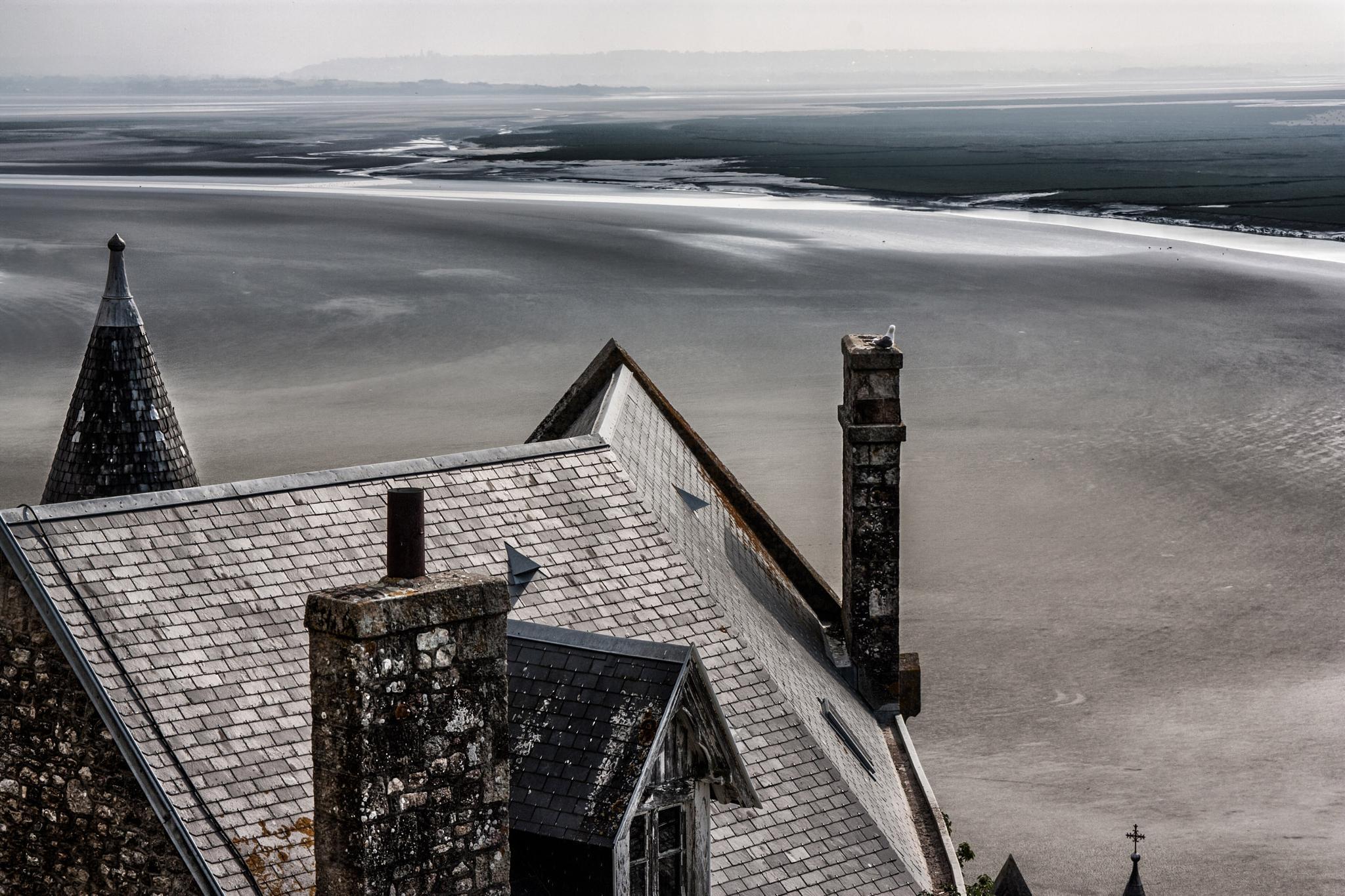 Le Mont Saint-Michel by LidiaVanhamme