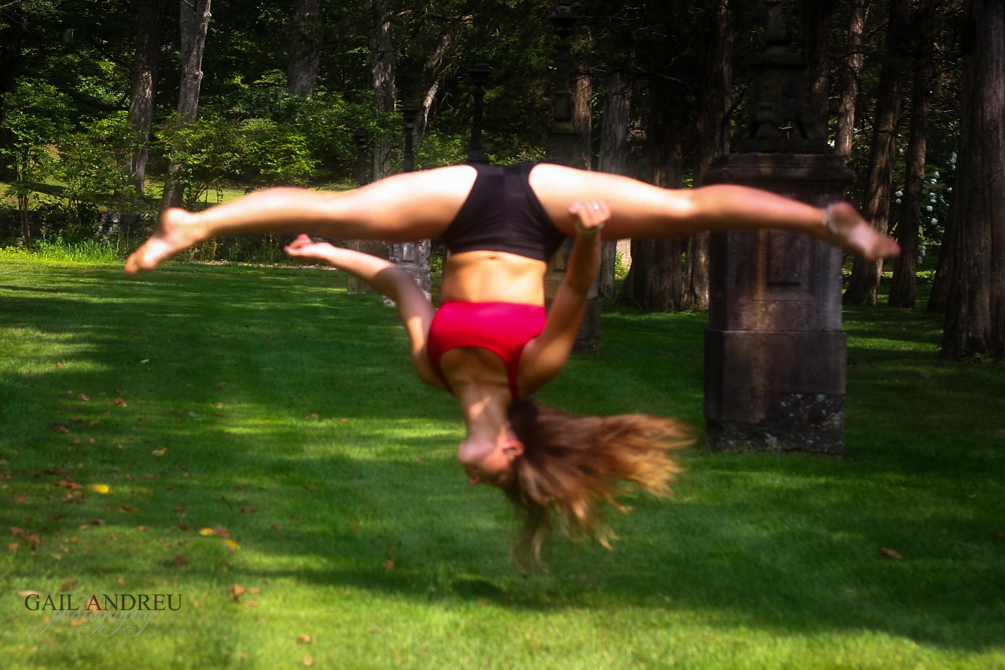 Flipping Out by Gail Andreu