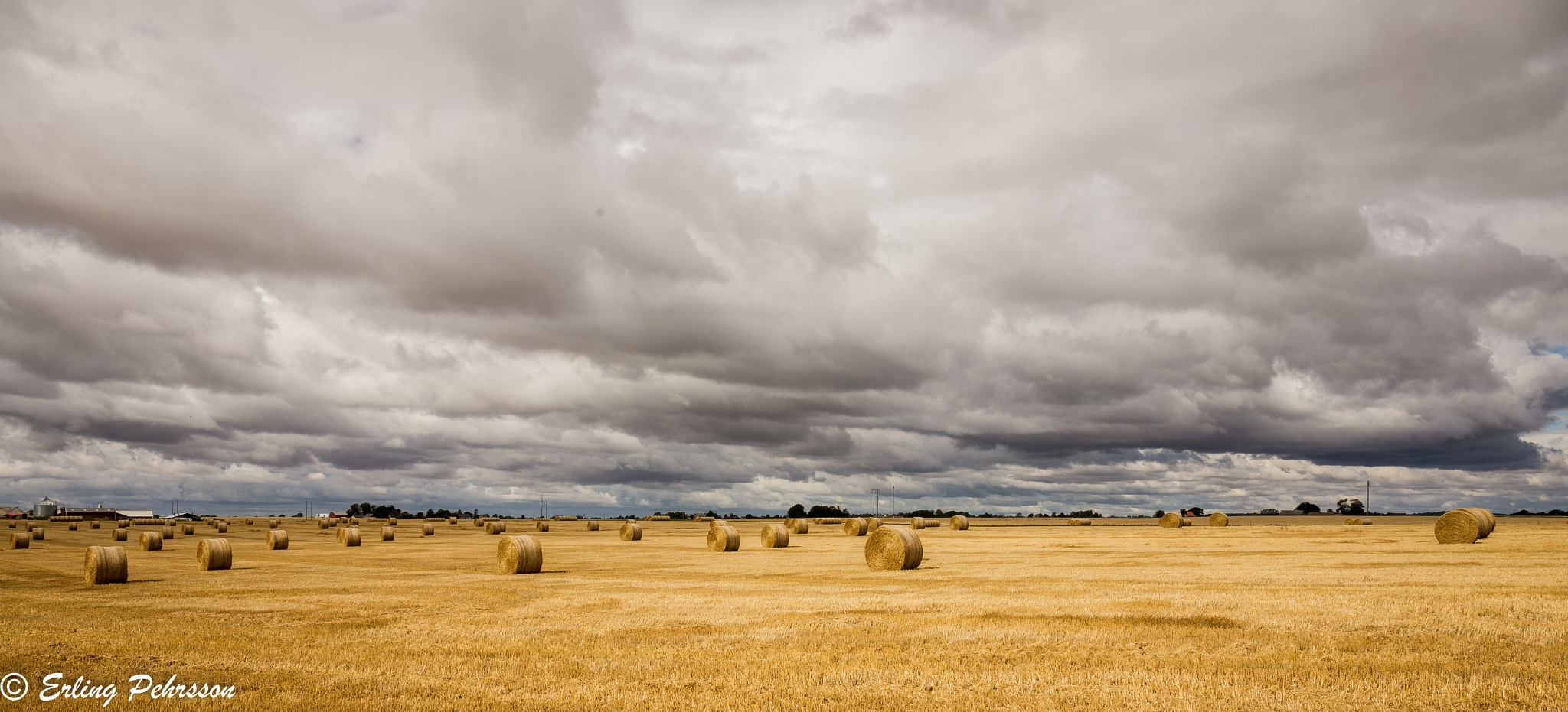 storm over wheat field  by erling.pehrsson