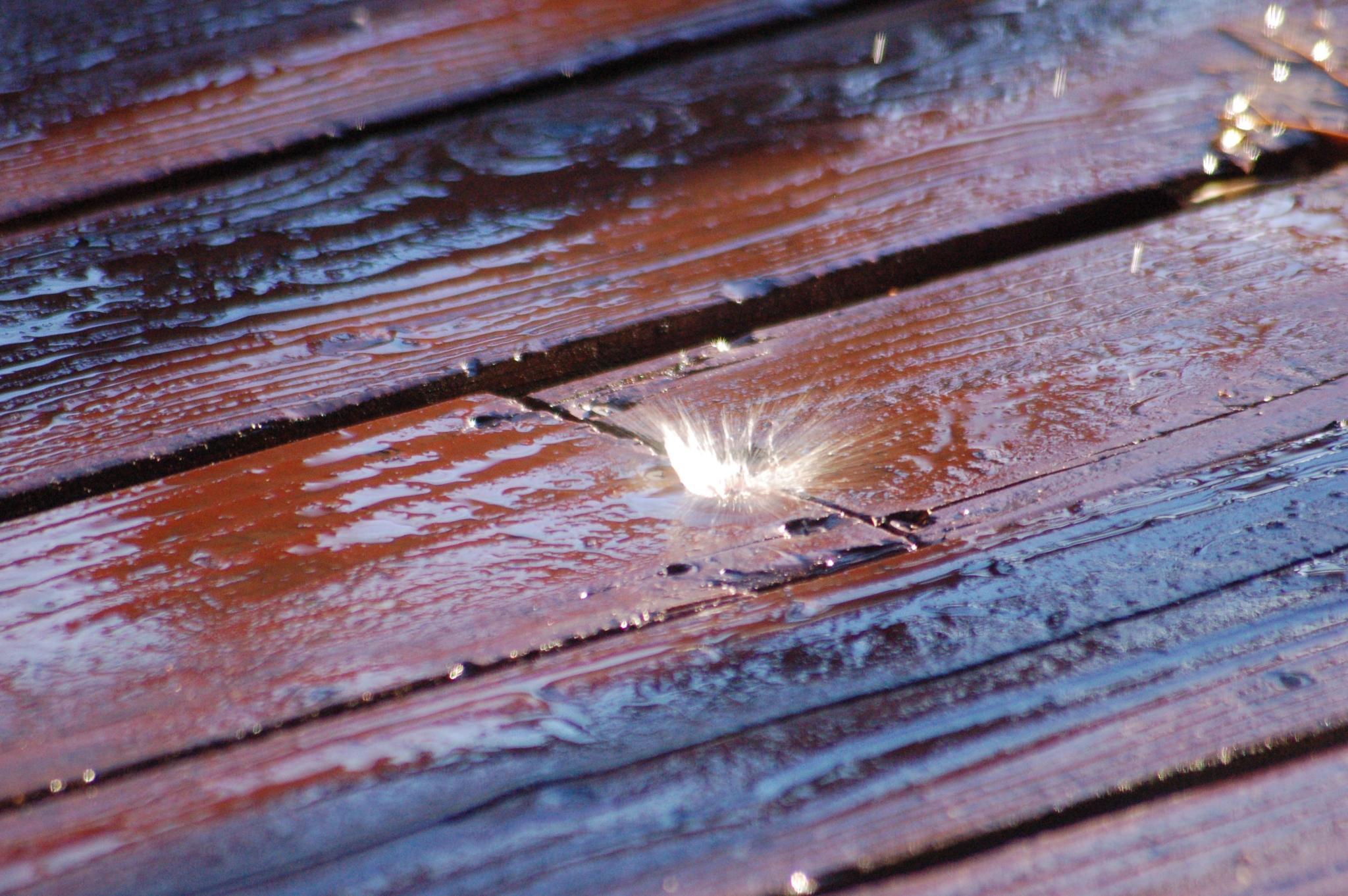 Splash_on_Deck by PuckDucker