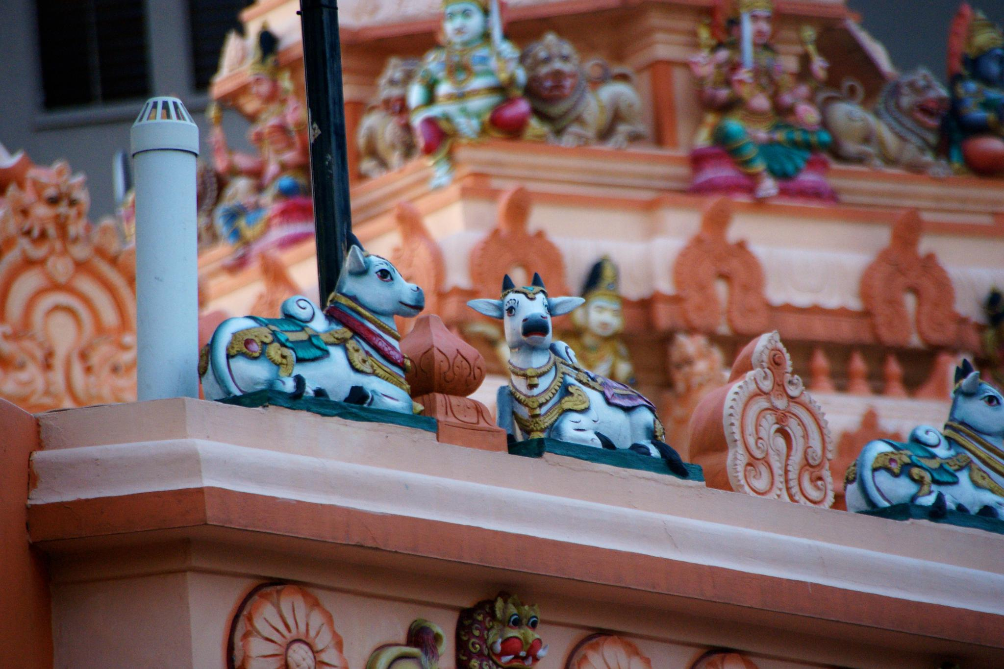 At the Hindu Temple by jay.j.keller