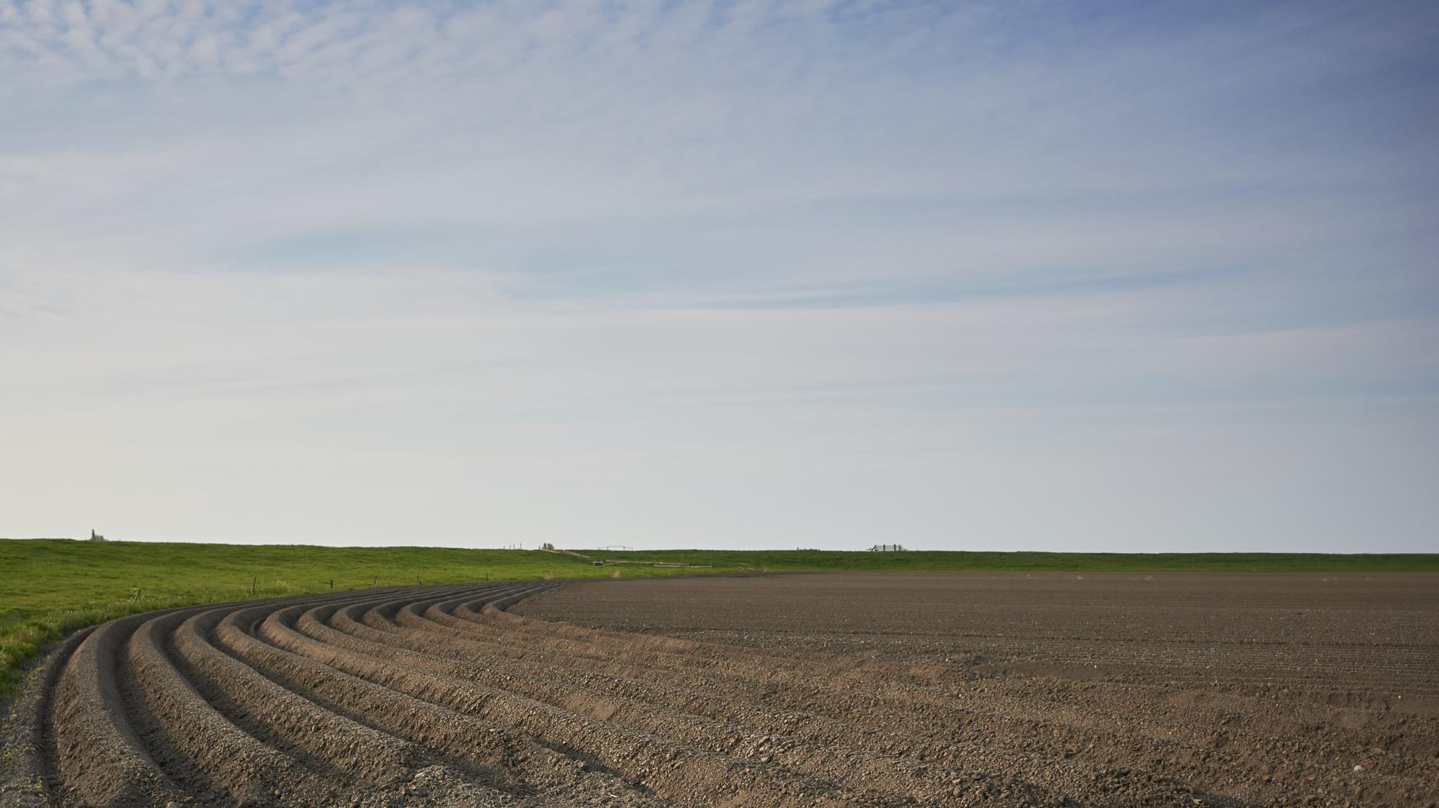 Photo in Landscape #landscape #coolpix a #netherlands
