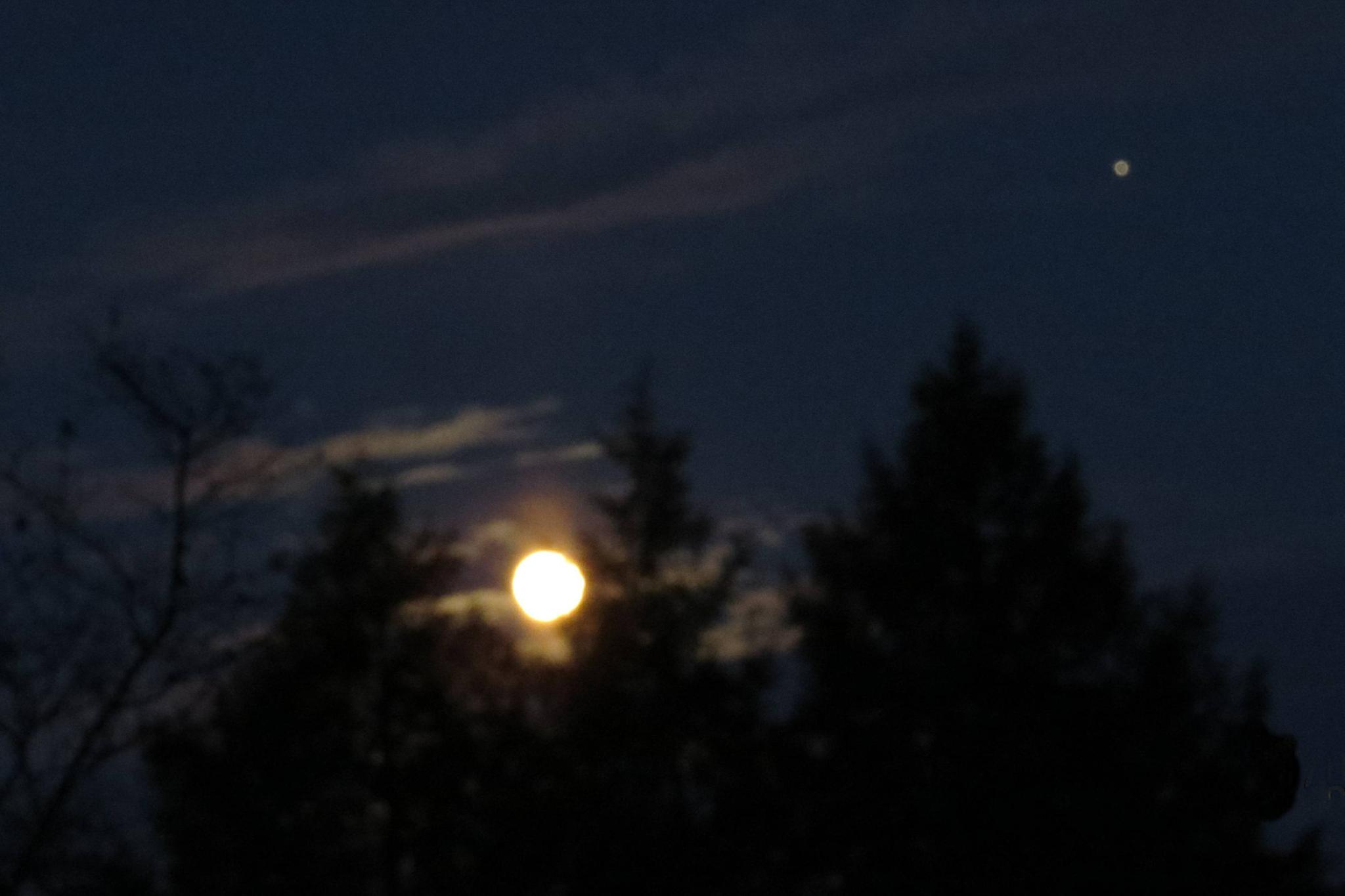Is this the Moon & Jupiter? by janet.fisher.503