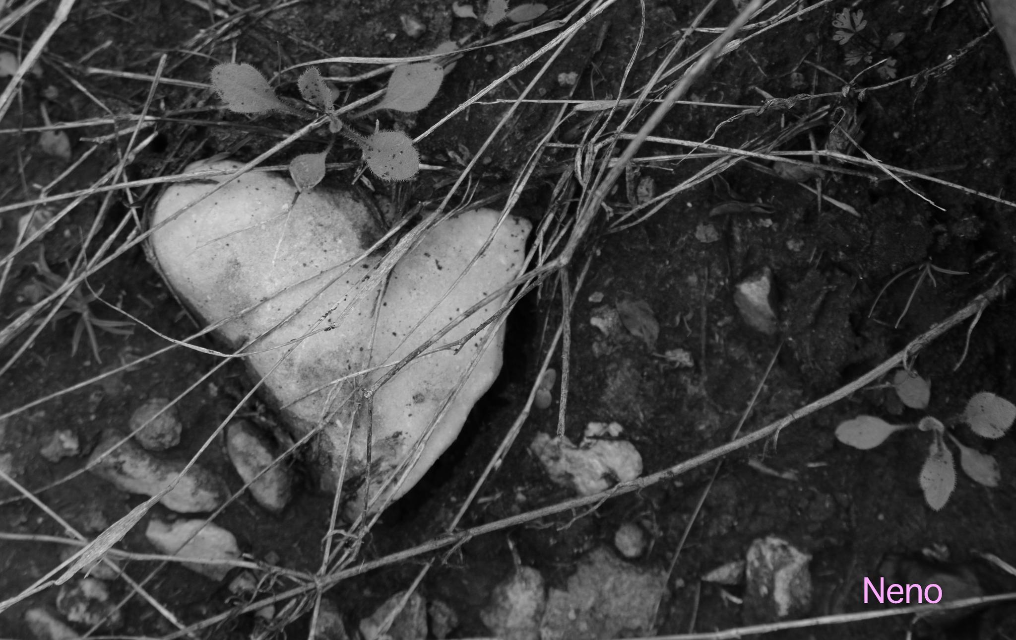 Lost Heart by irene.diaz.581
