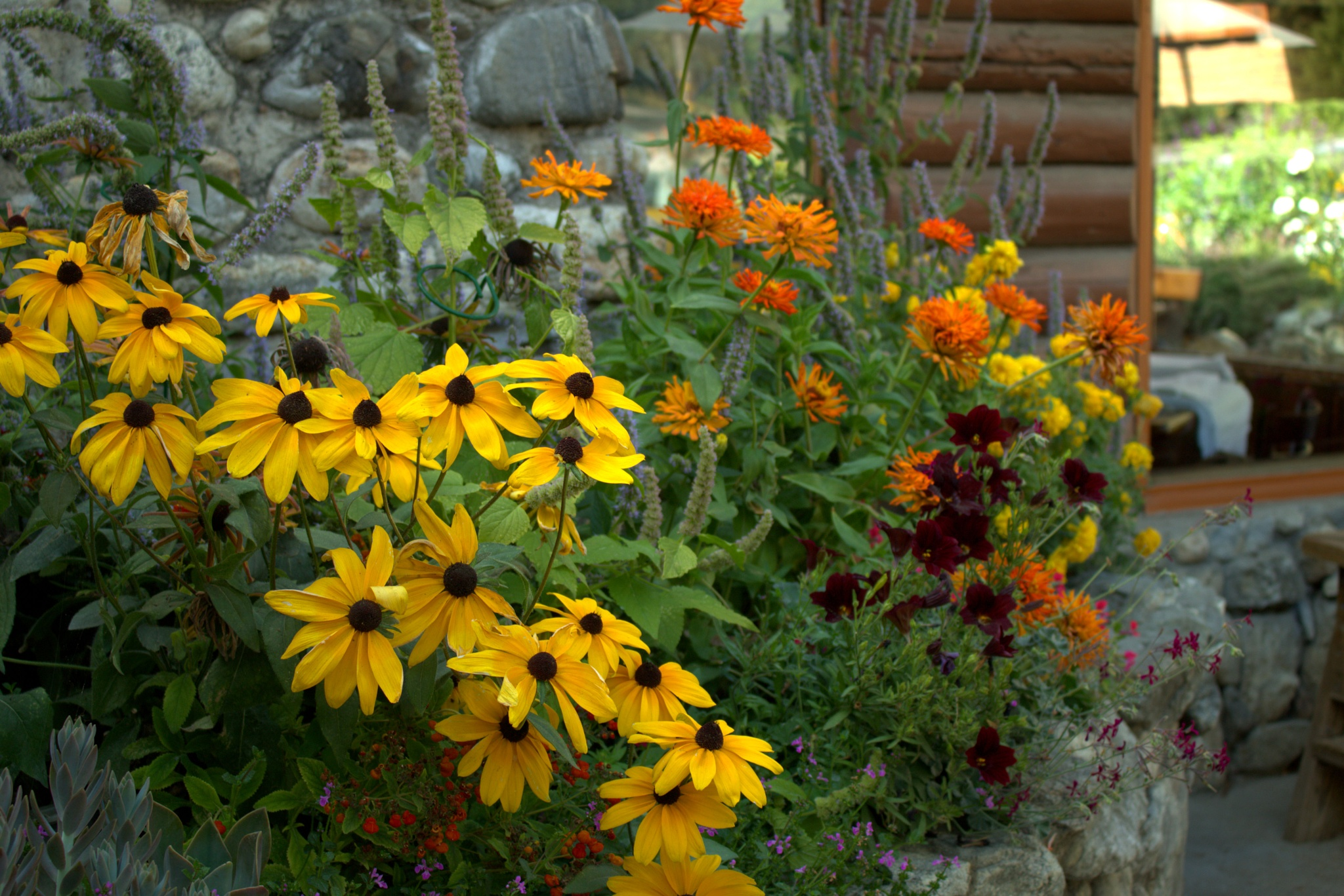 Late Summer Blooms by M.ErinSmith