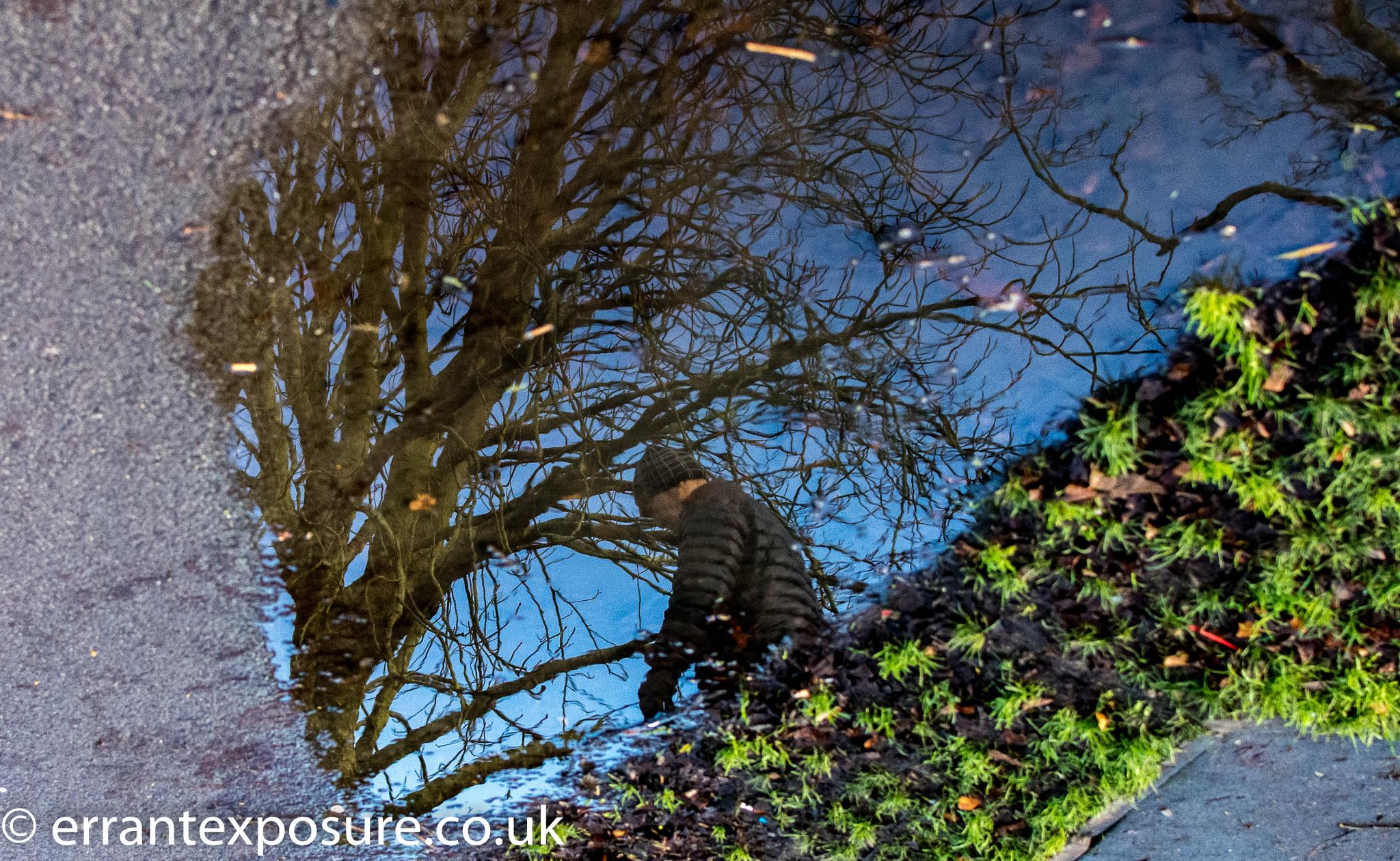 Puddle. by Errant Exposure