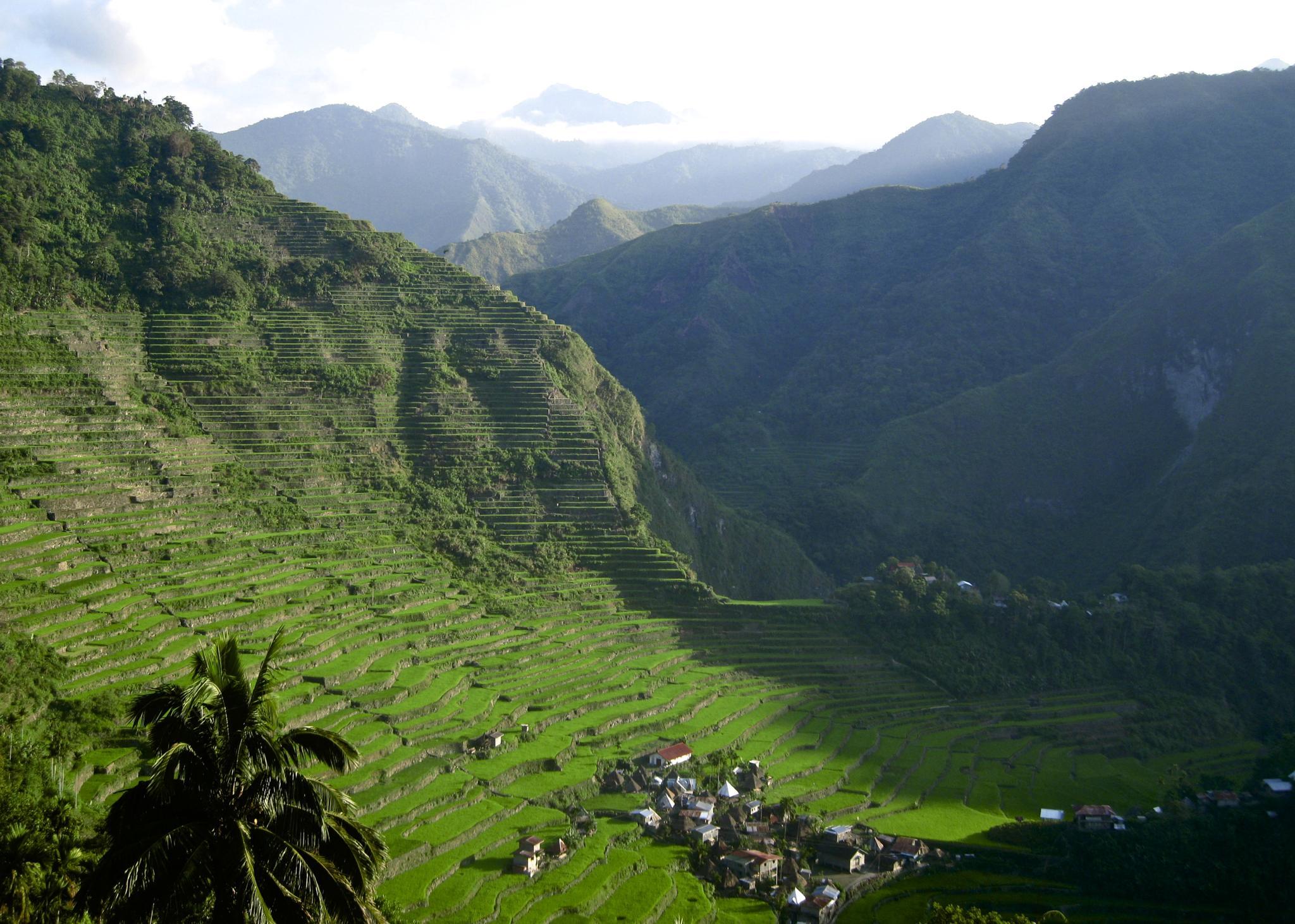 Banaue Rice Terraces by rebecca.mayoll
