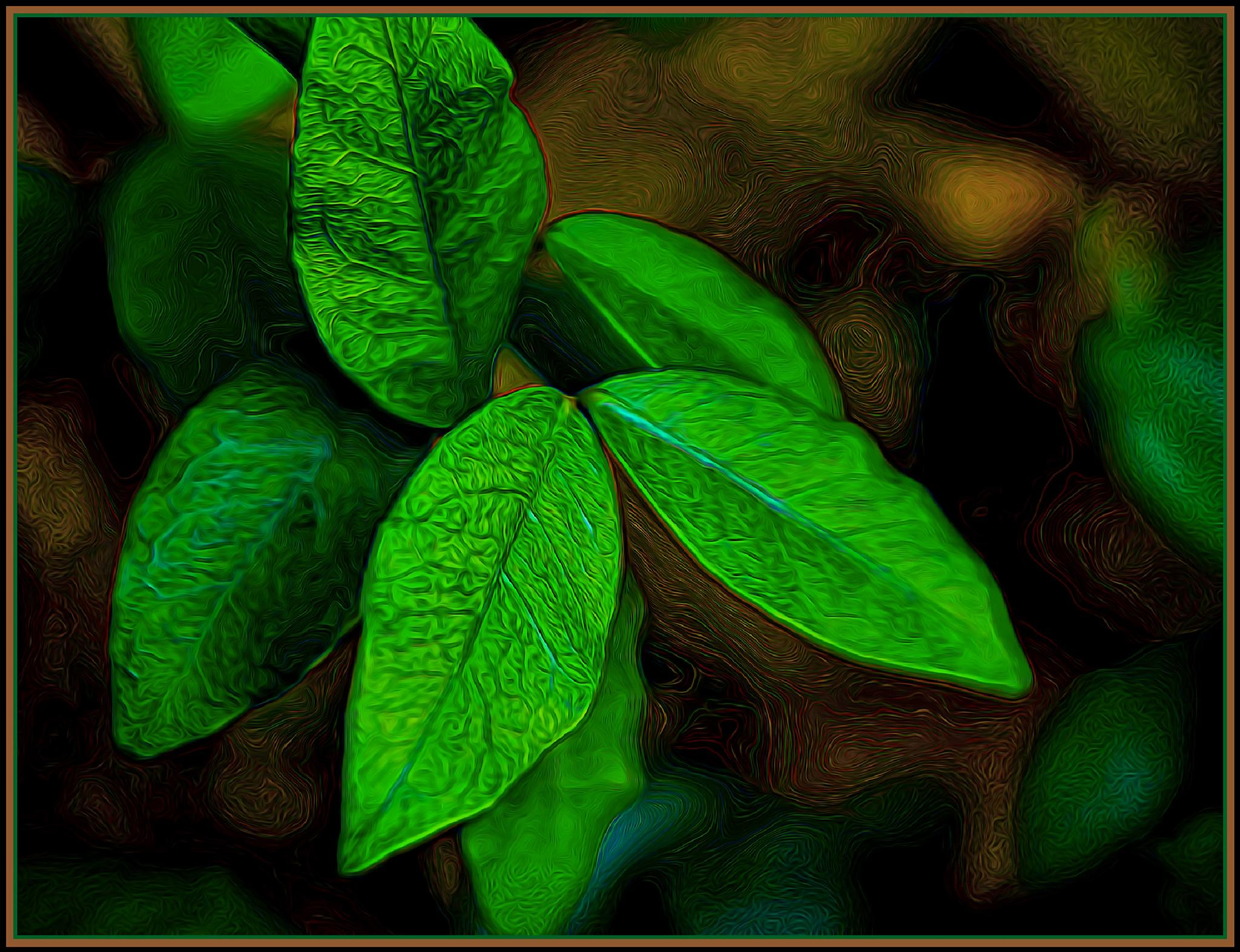 Photo in Fine Art #leaves #macro #green