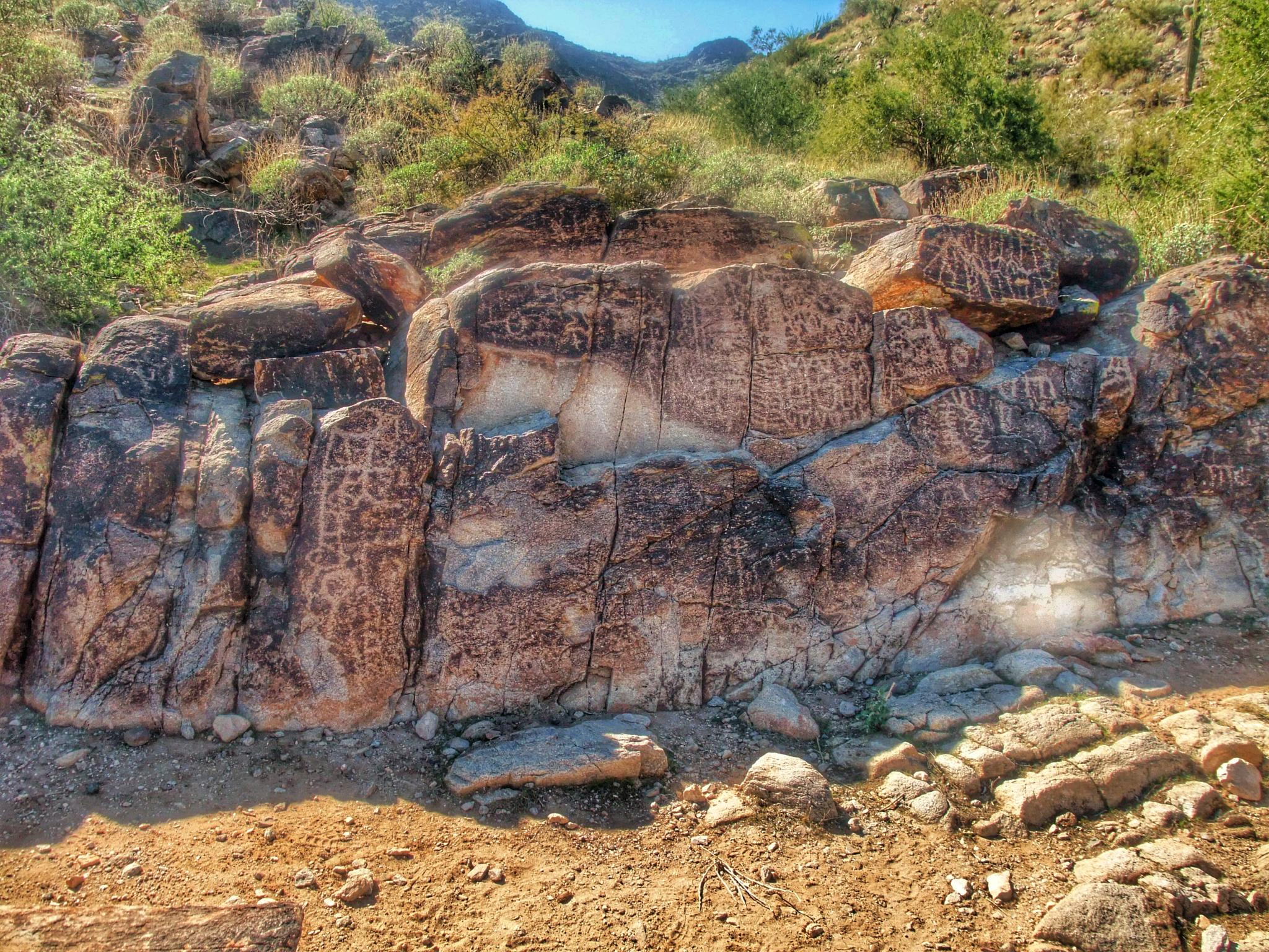 Petroglyphs - White Tanks - Arizona  by Andy Dilling