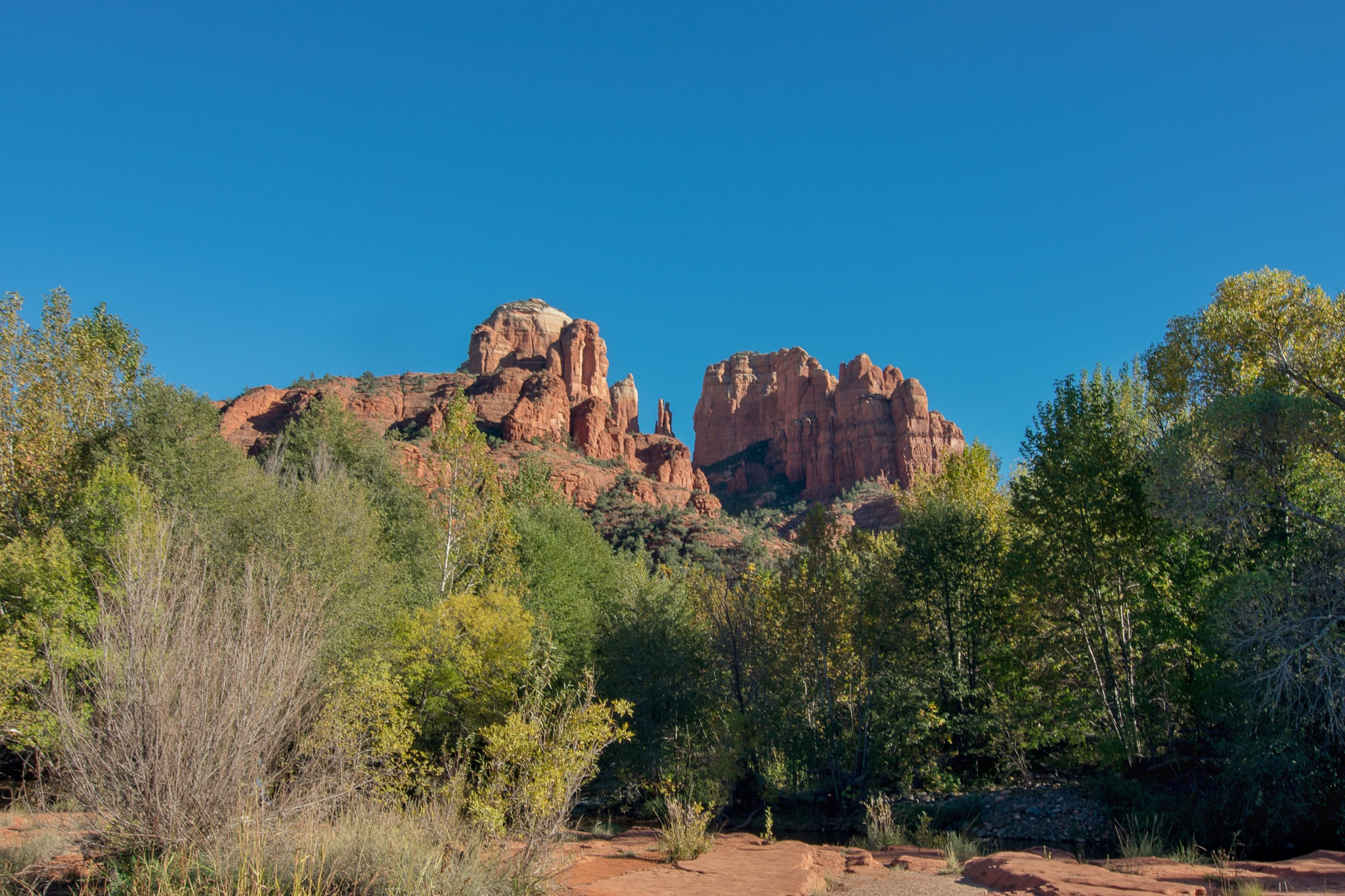 Cathedral Rock - Sedona, Arizona by Andy Dilling