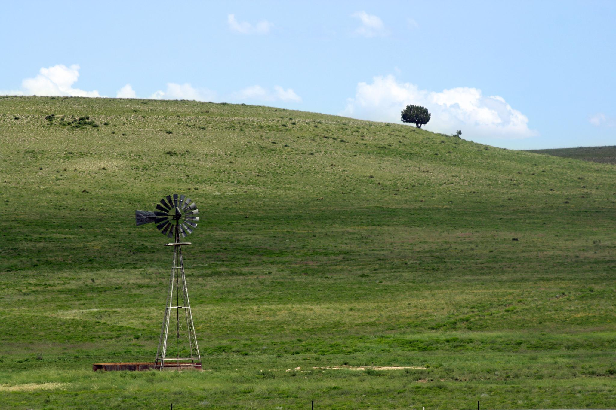 Photo in Landscape #grass #windmill #hills #new mexico
