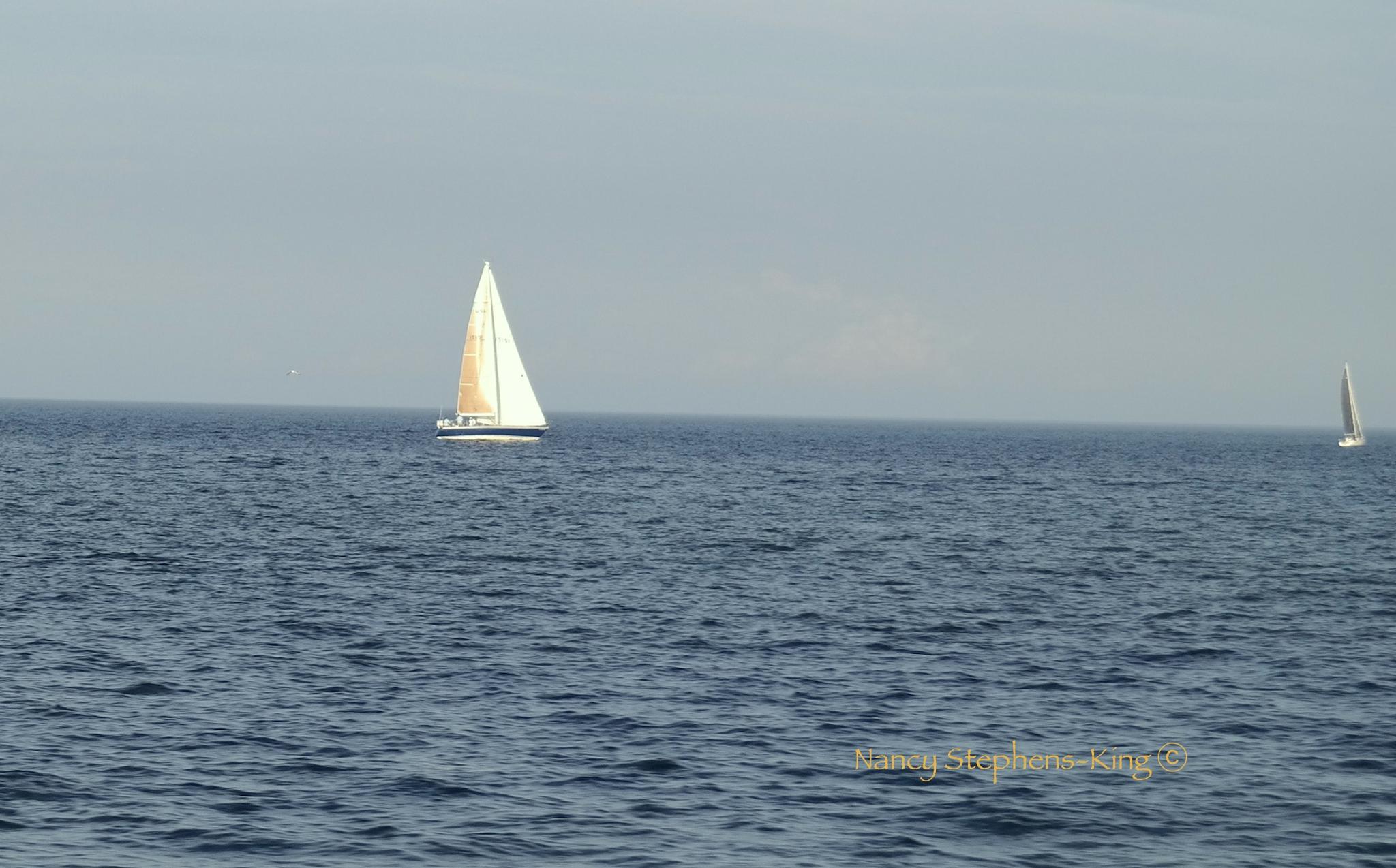 Sailing on Lake Sinclair by nstephensking