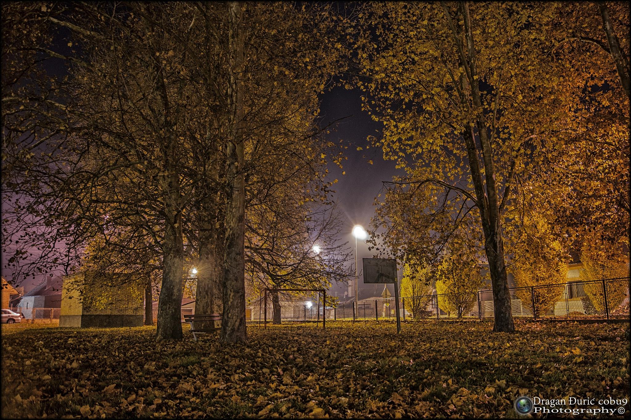 Autumn night by Dragan Đurić