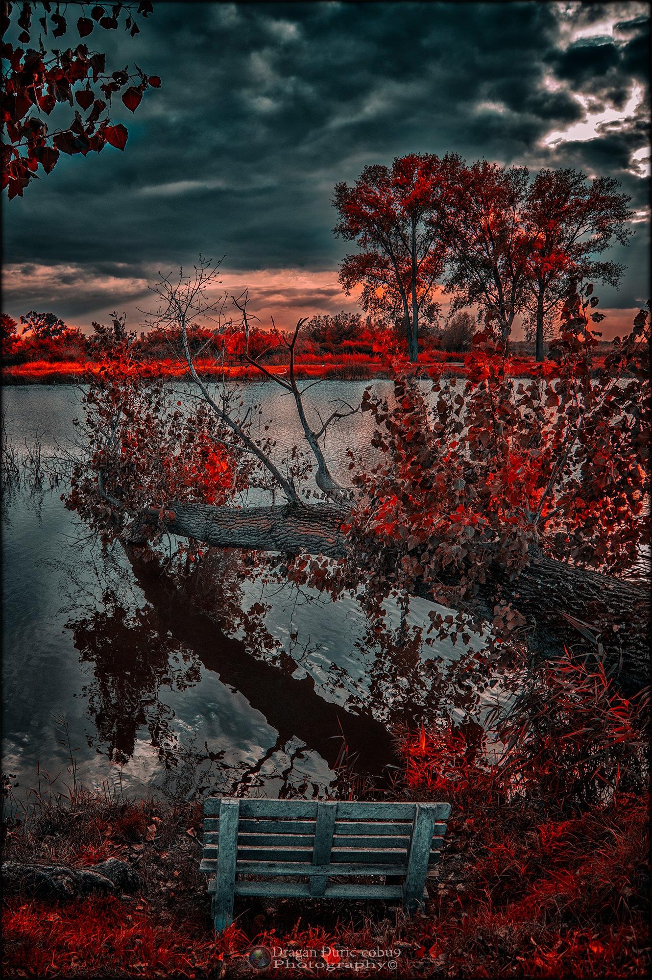 Autumn lake by Dragan Đurić