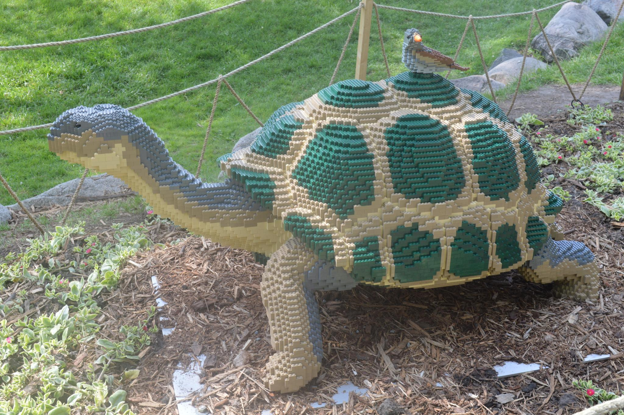 Lego Turtle by CLCampbell