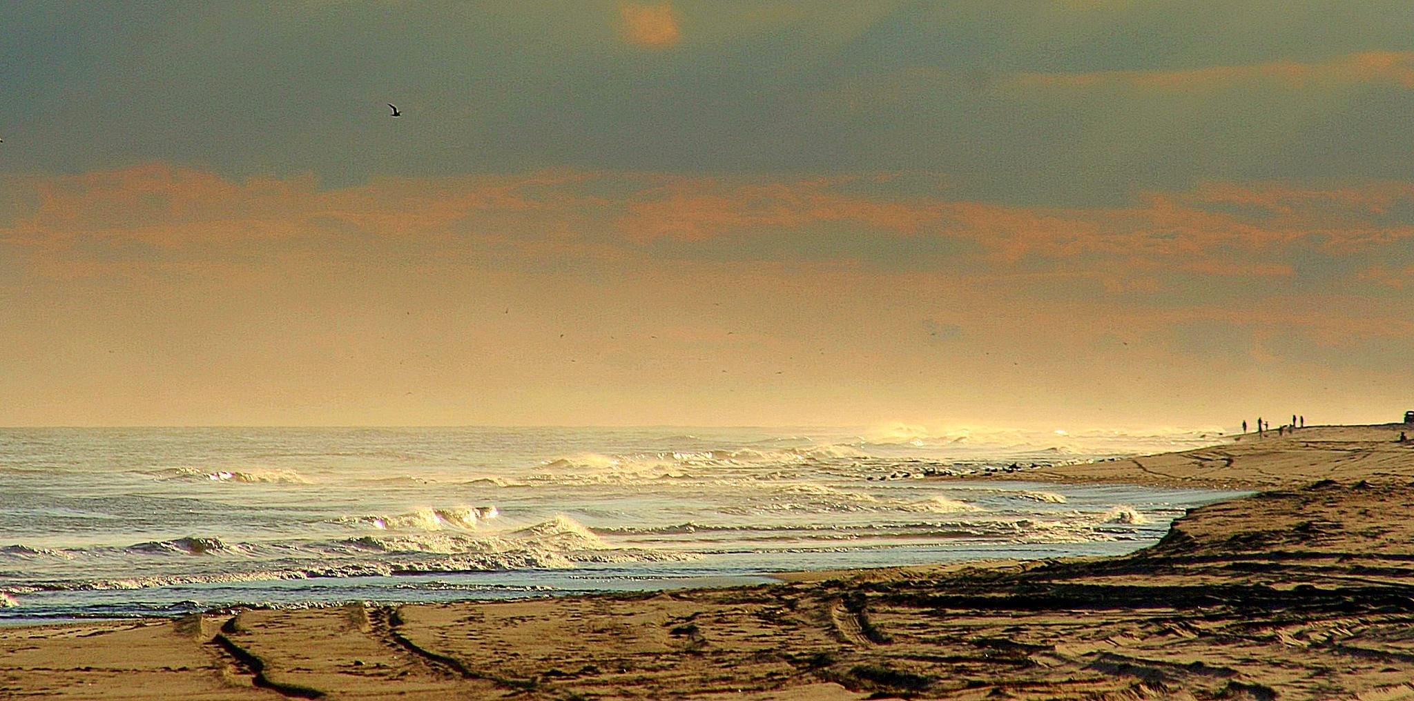 Beach by Adam Wyciszkiewicz