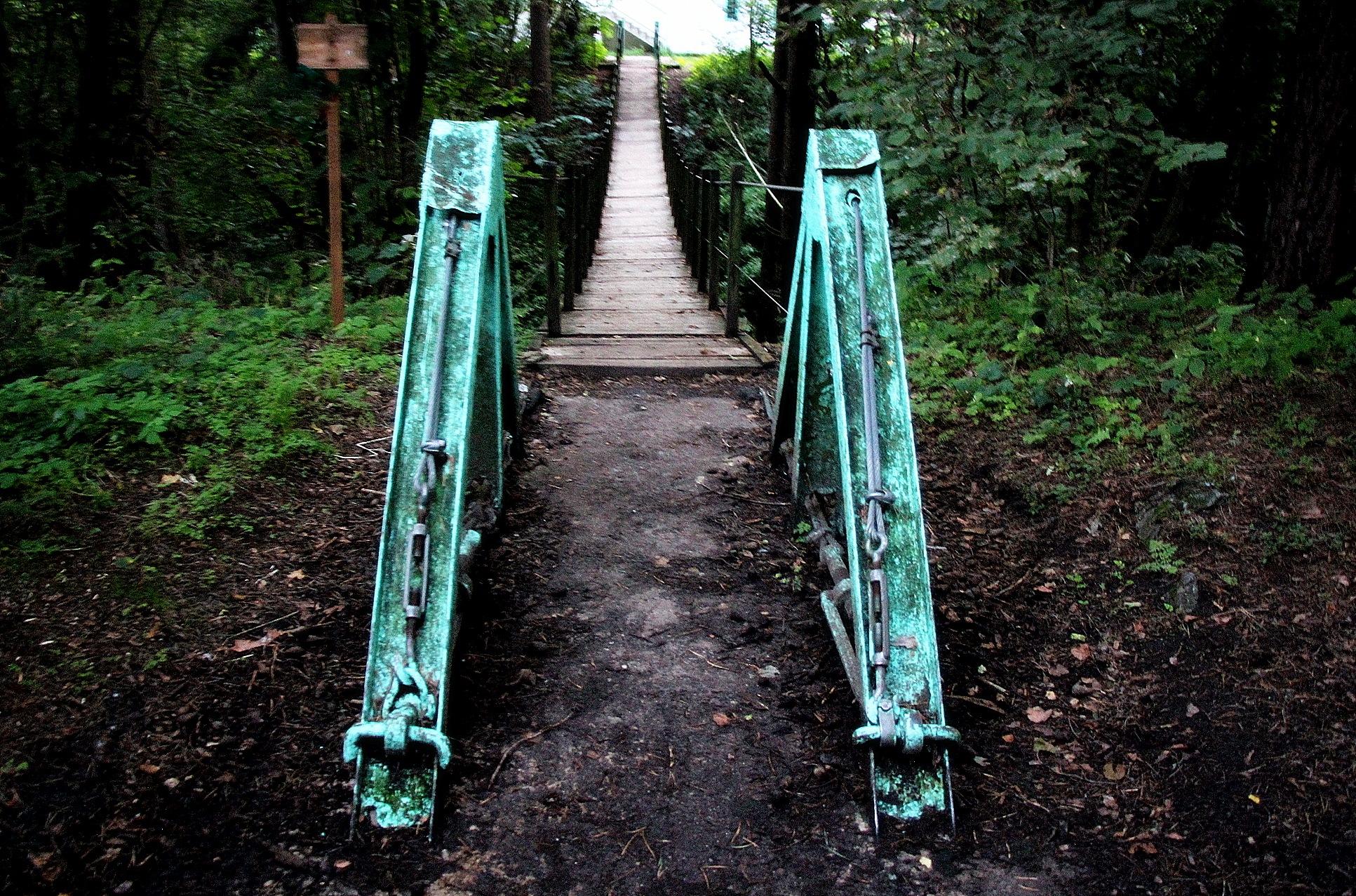 Bridge by Adam Wyciszkiewicz