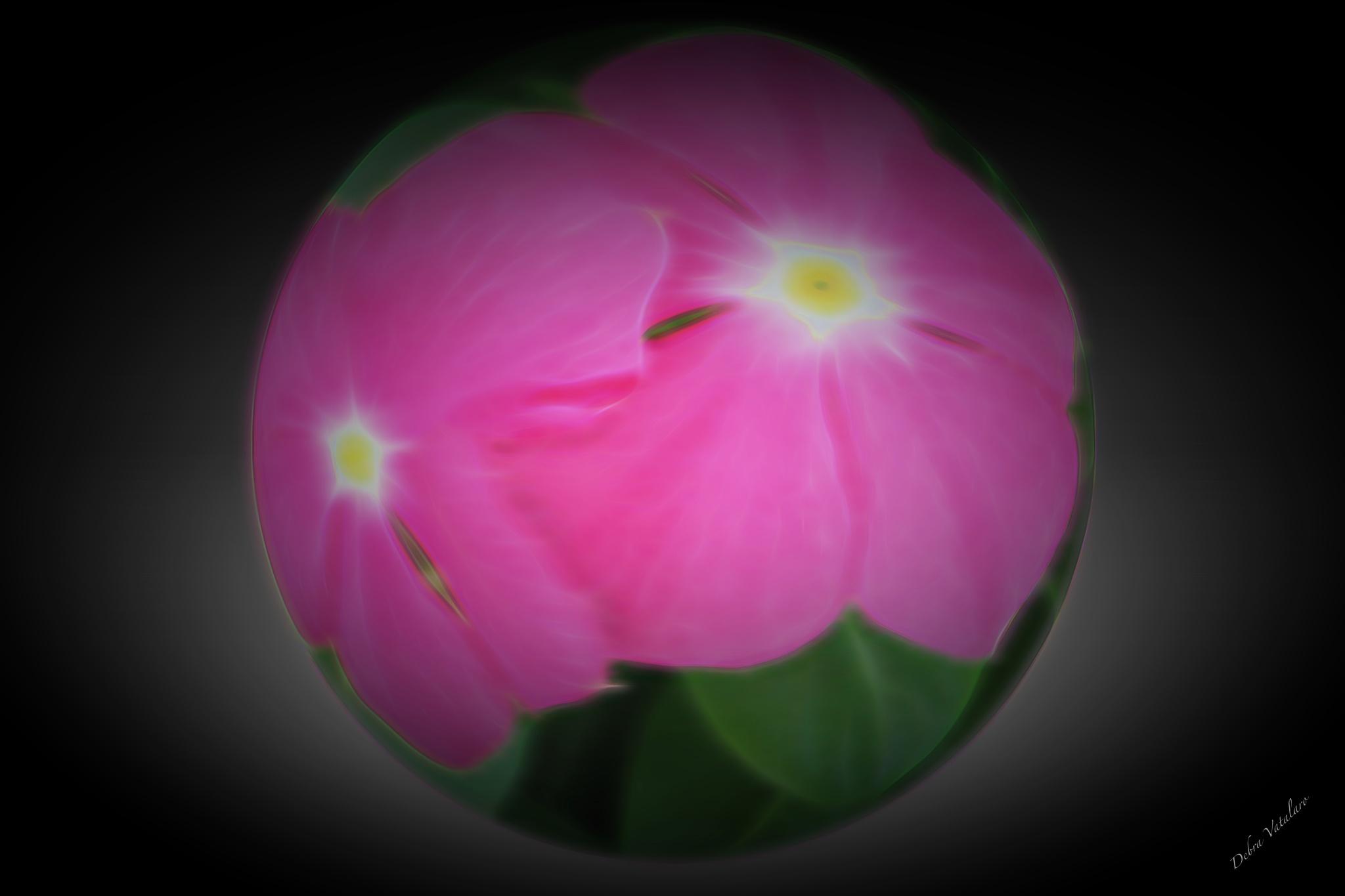 My Pearls-Dark flower by DAVatalaro